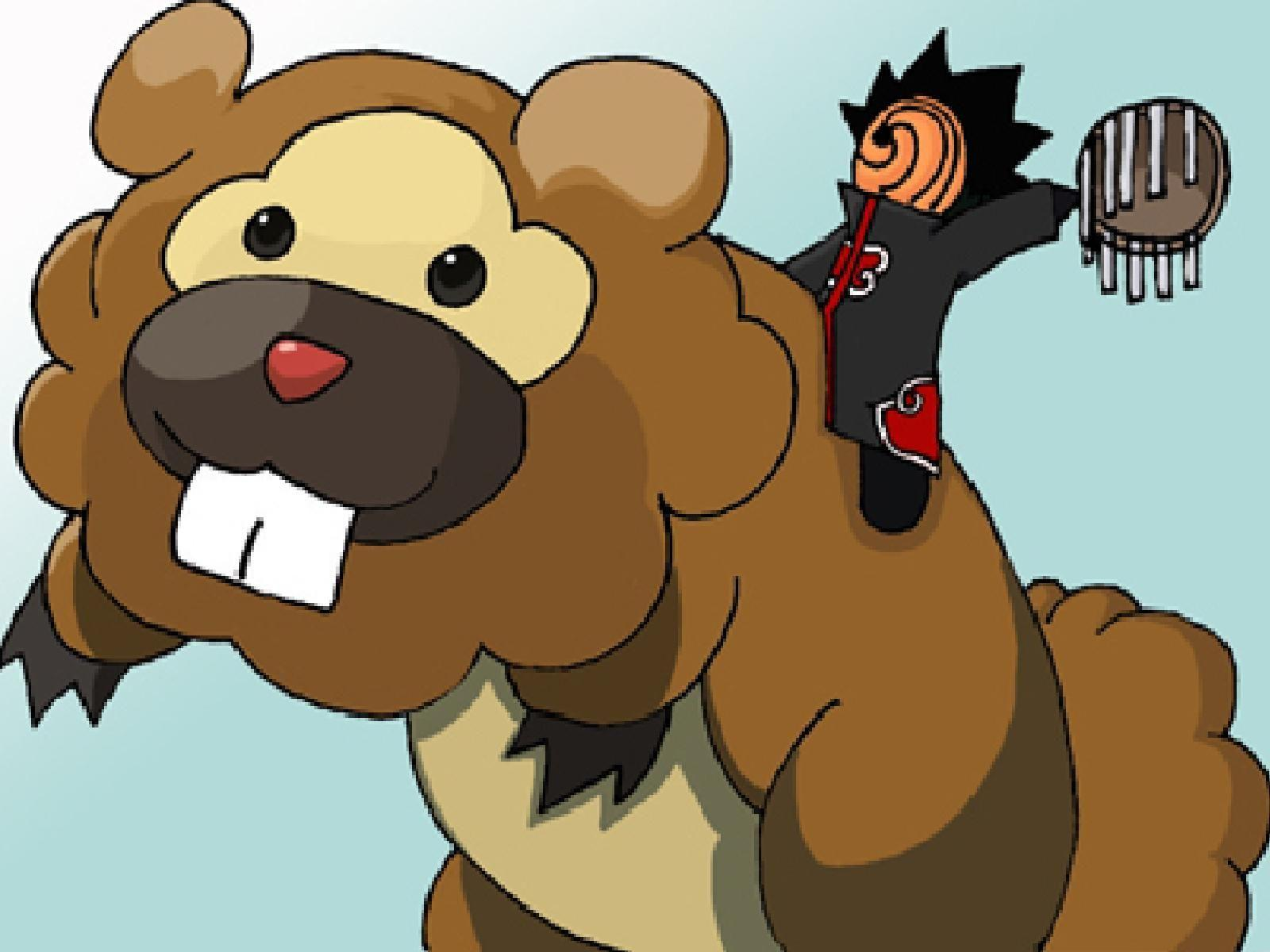 pokemon, Tobi, Bidoof :: Wallpapers