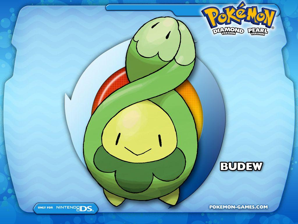 desktop budew pokemon anime