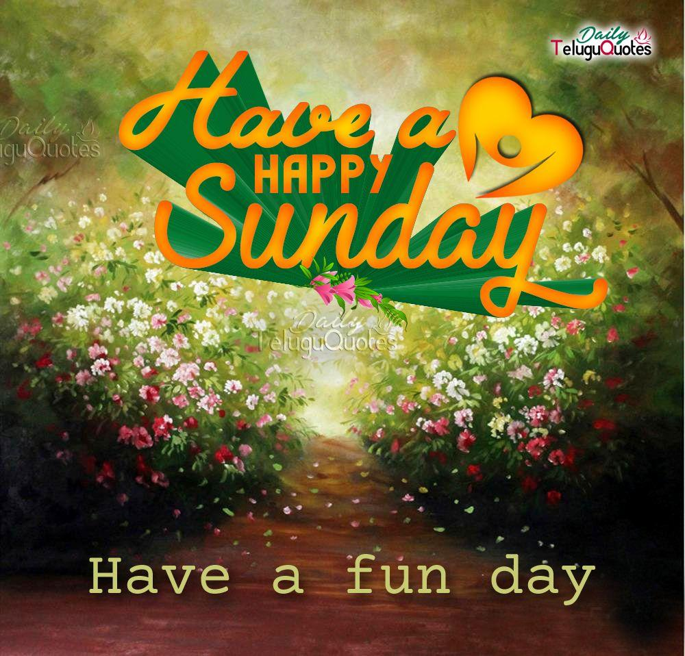 Happy Sunday Wallpapers Wallpaper Cave