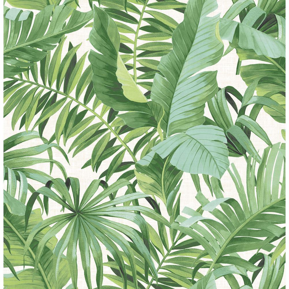 Tropical Leaf Wallpapers Wallpaper Cave Depending on how intricate the pattern is, leaf wallpaper can also be a great choice for artistic areas or bedrooms. tropical leaf wallpapers wallpaper cave