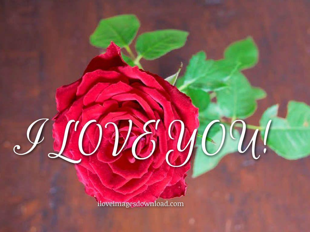 I Love You: Image Photos Pictures and Wallpapers HD Free Download