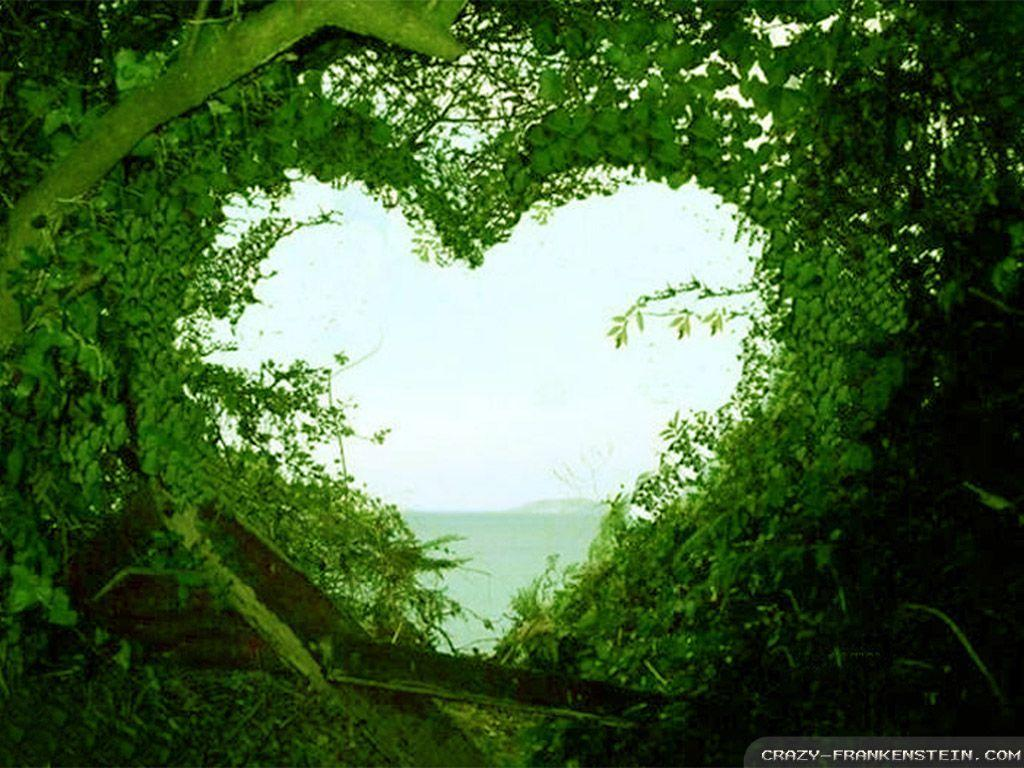 Beautiful Love Nature Wallpapers Wallpaper Cave