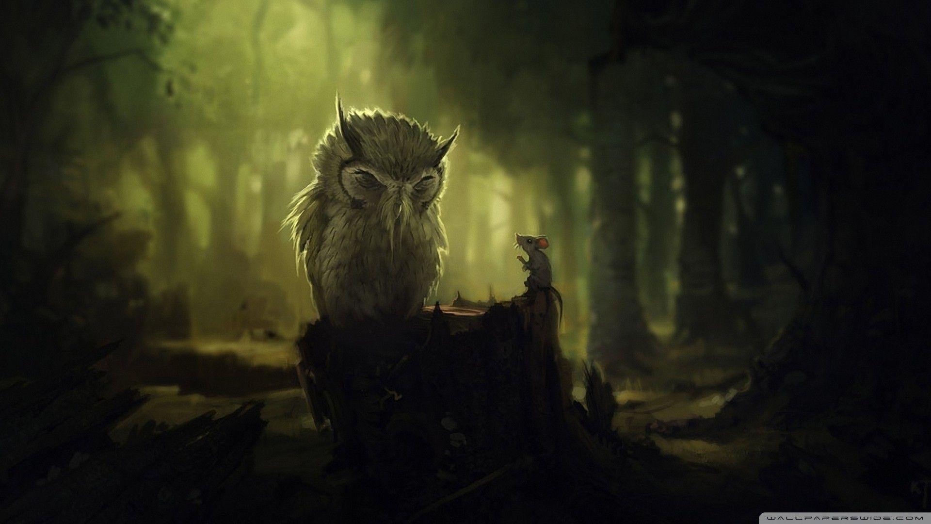 Owl City HD Wallpapers - Wallpaper Cave