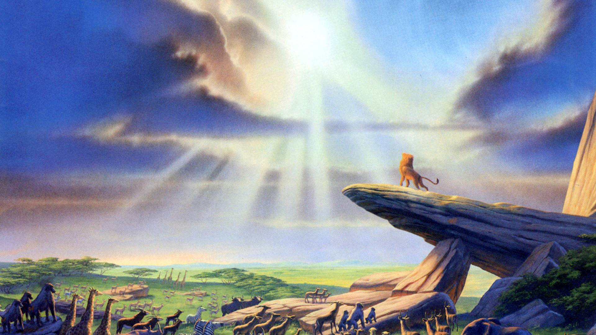 Lion King Backgrounds Hd Wallpaper Cave