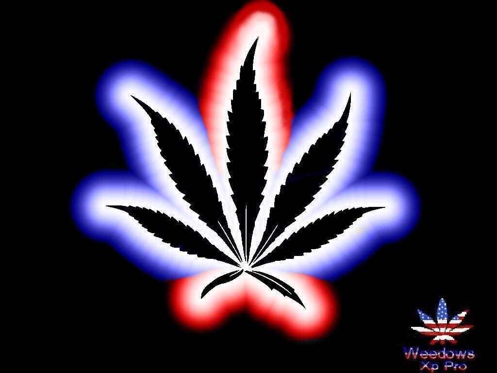 Песня про марихуану скачать бесплатно к чему приводит конопля