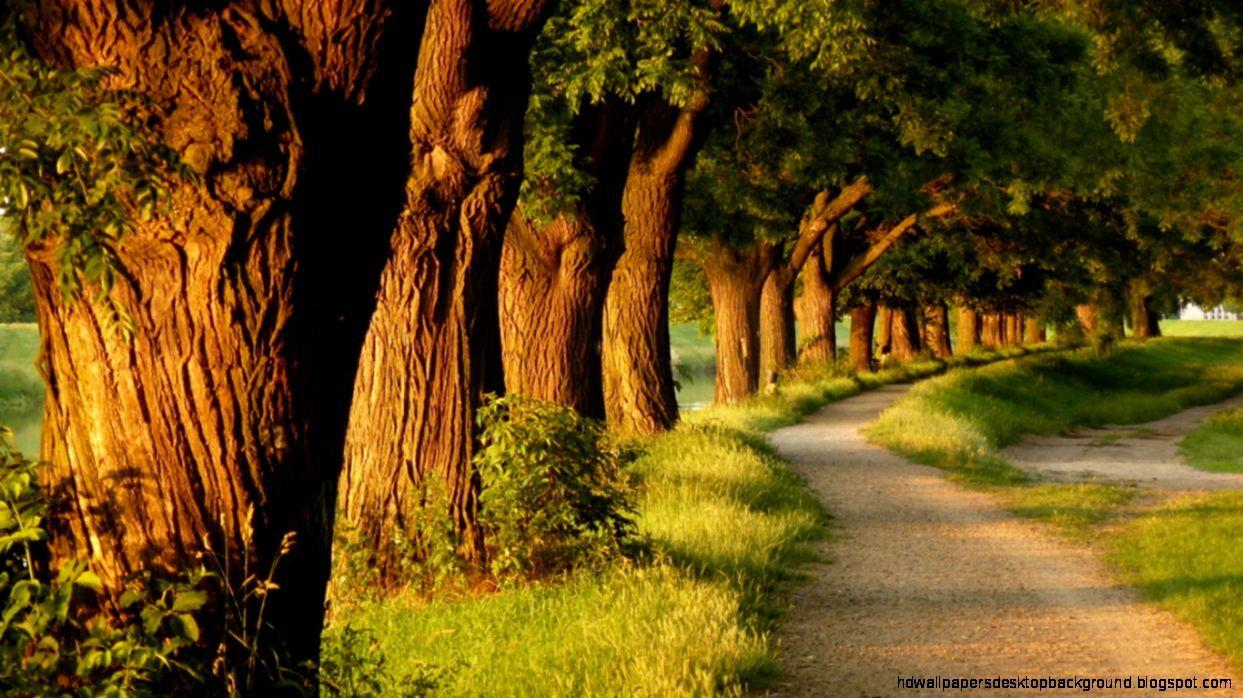 Beautiful Nature Wallpapers With Quotes For Facebook Cover
