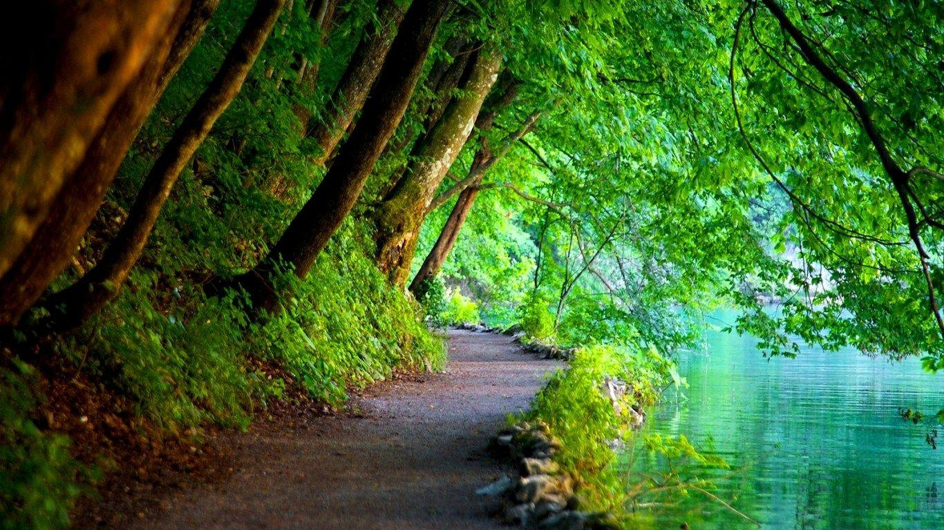Beautiful Nature Wallpapers With Quotes For Facebook Cover Page