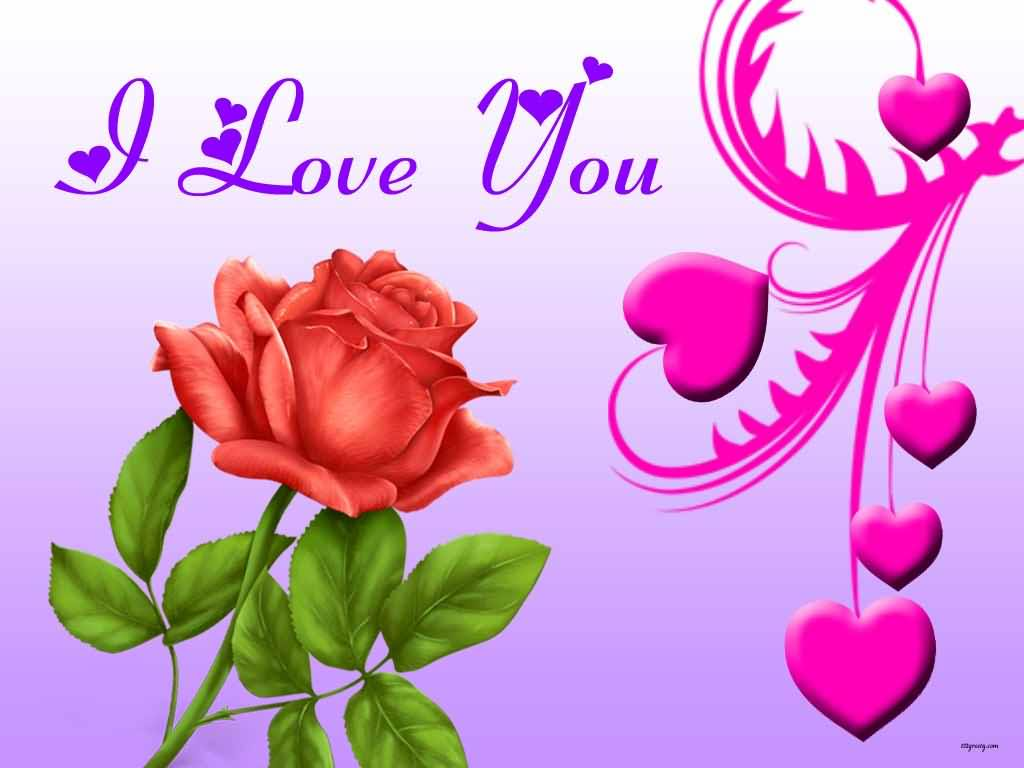I Love You Rose Bud Wallpapers