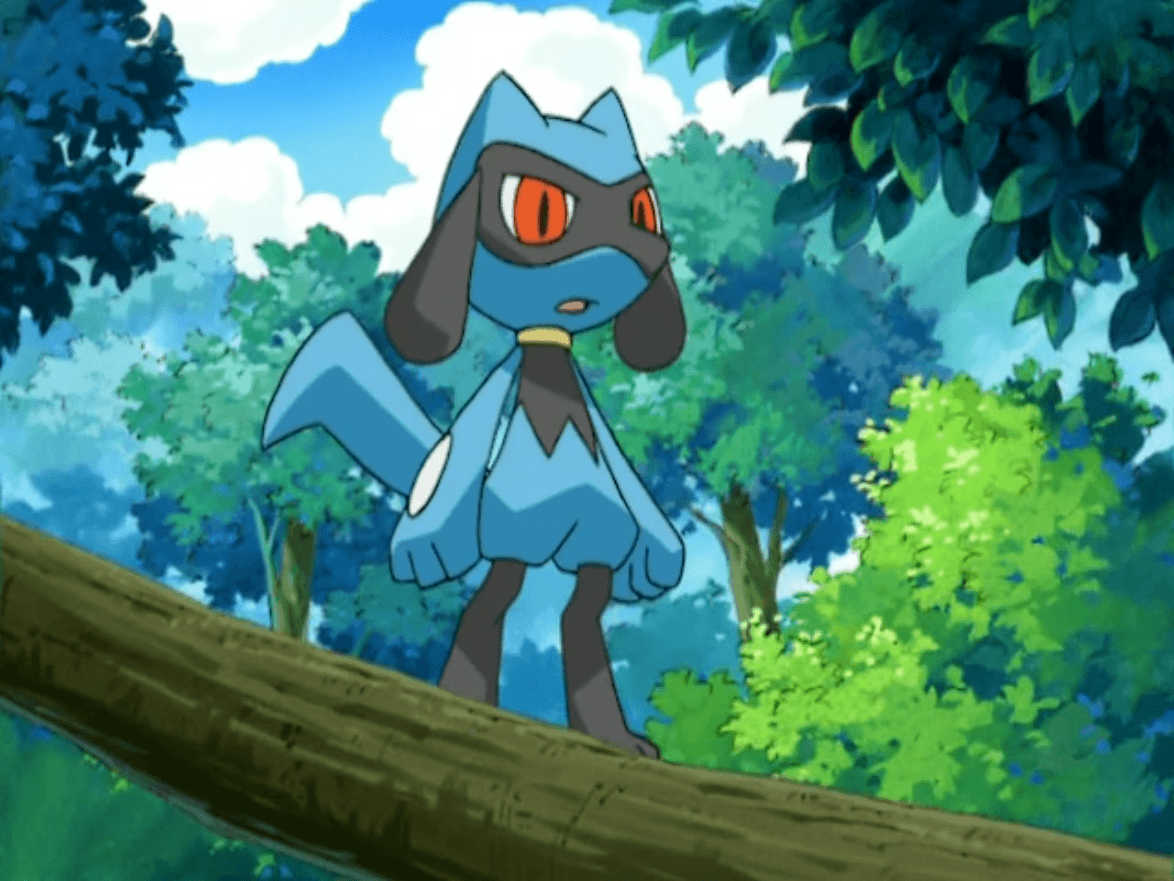Image - Riolu (anime).png | Pokémon Wiki | FANDOM powered by Wikia