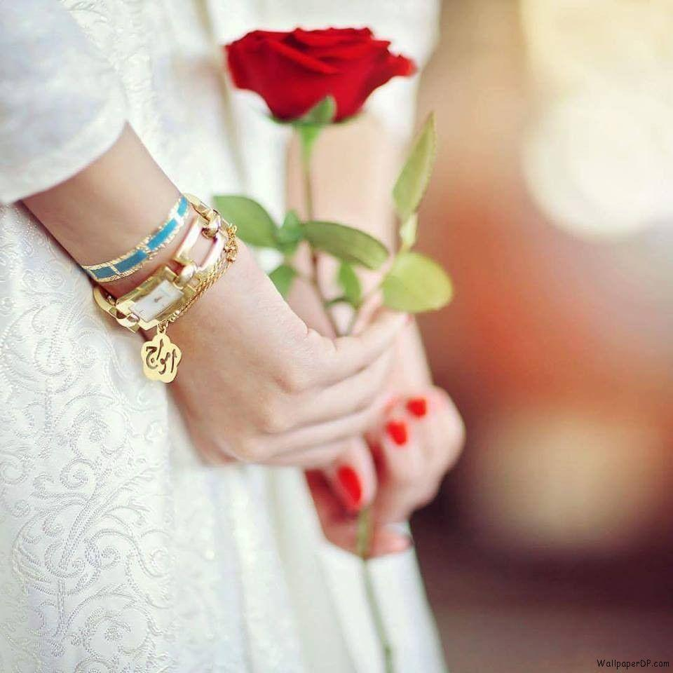 Image for Super Cute Hands with a Rose Unseen Dp Pic for fb Girls