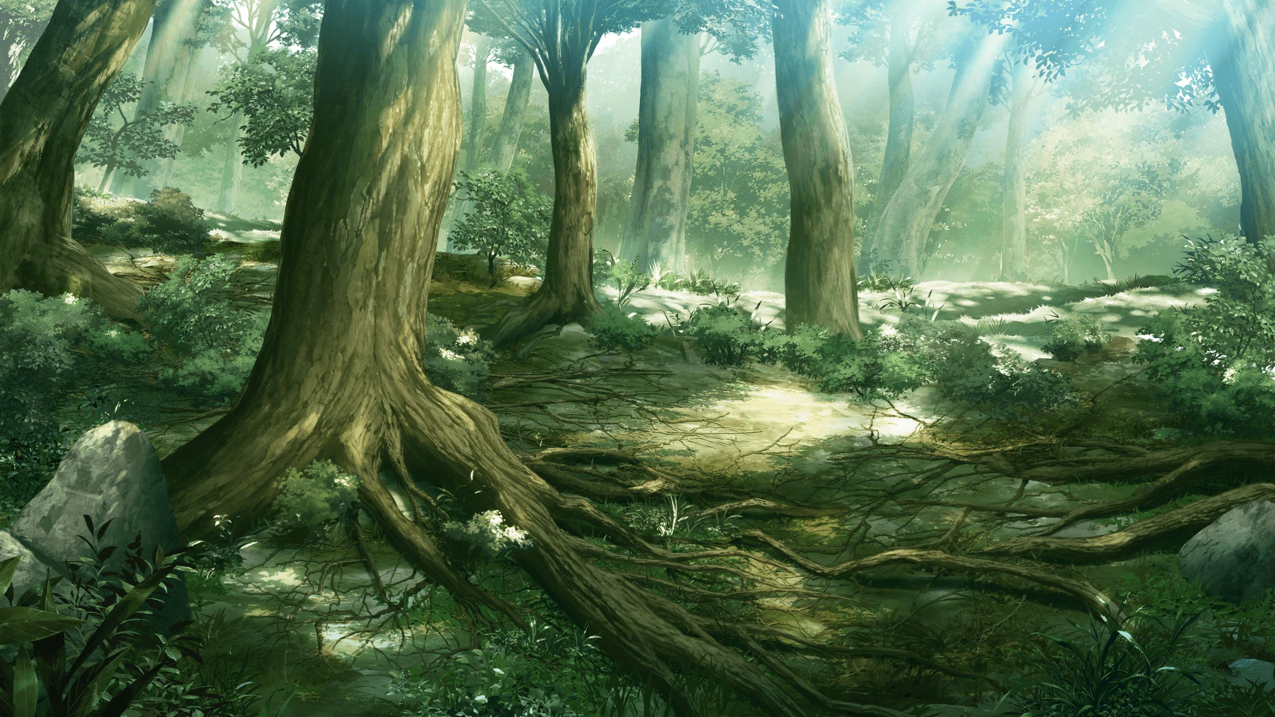 Wood Kingdom Wp3276199