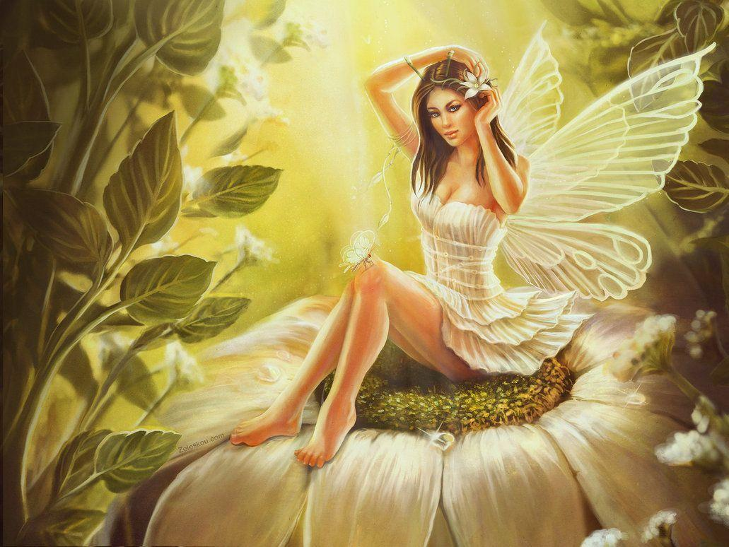 Hd Fairies Wallpapers Free Mobile Dwnld Wallpaper Cave
