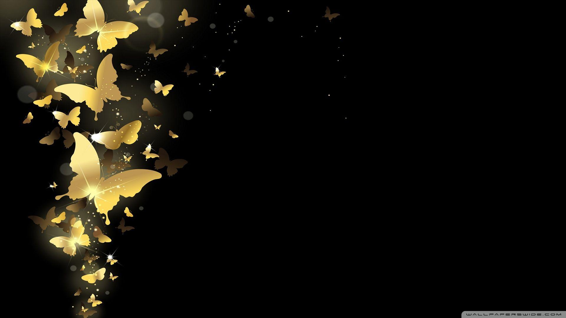 Night Butterfly Wallpapers Wallpaper Cave