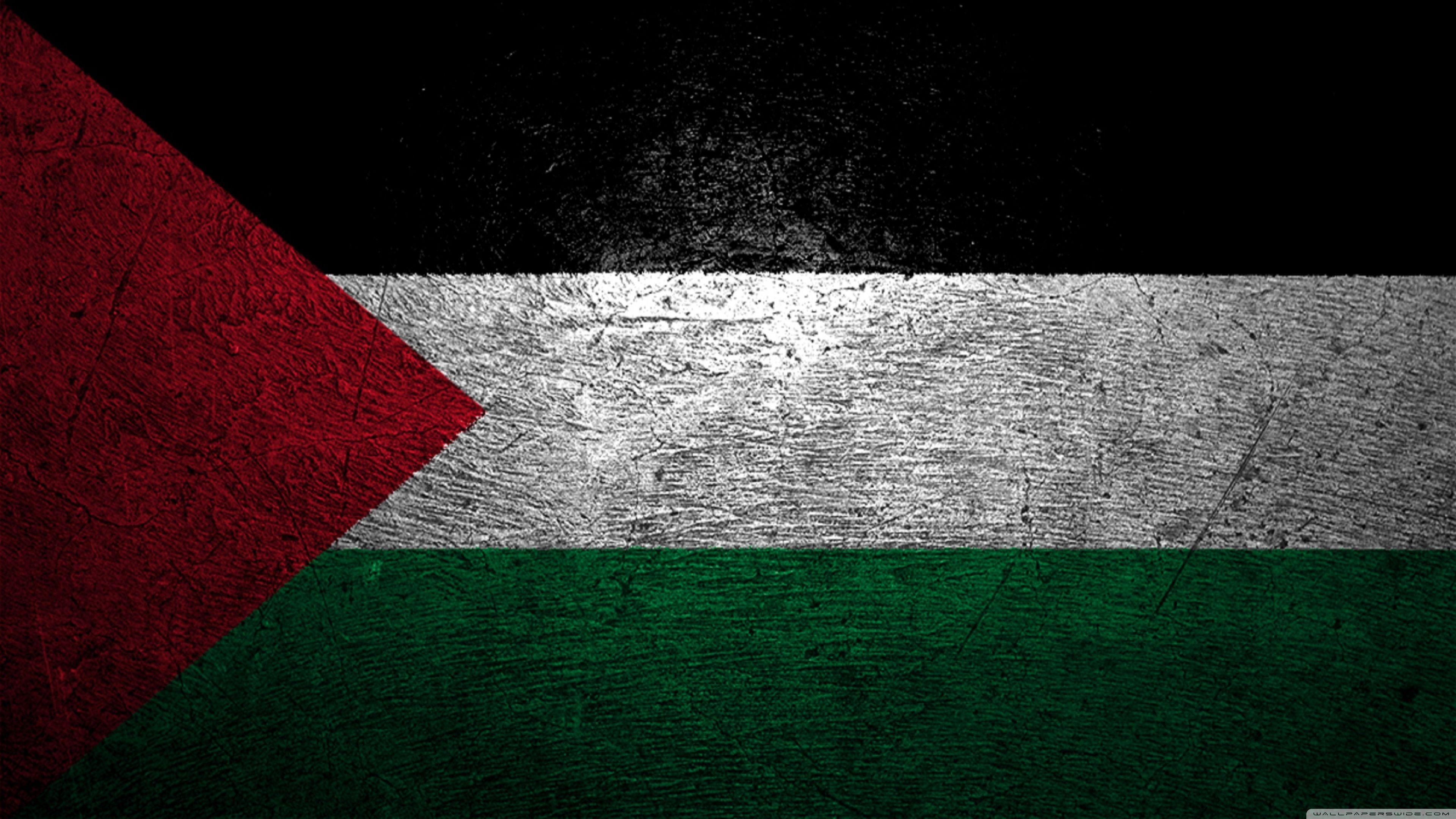 60125 Palestine Flag Wallpaper, Flag Wallpapers