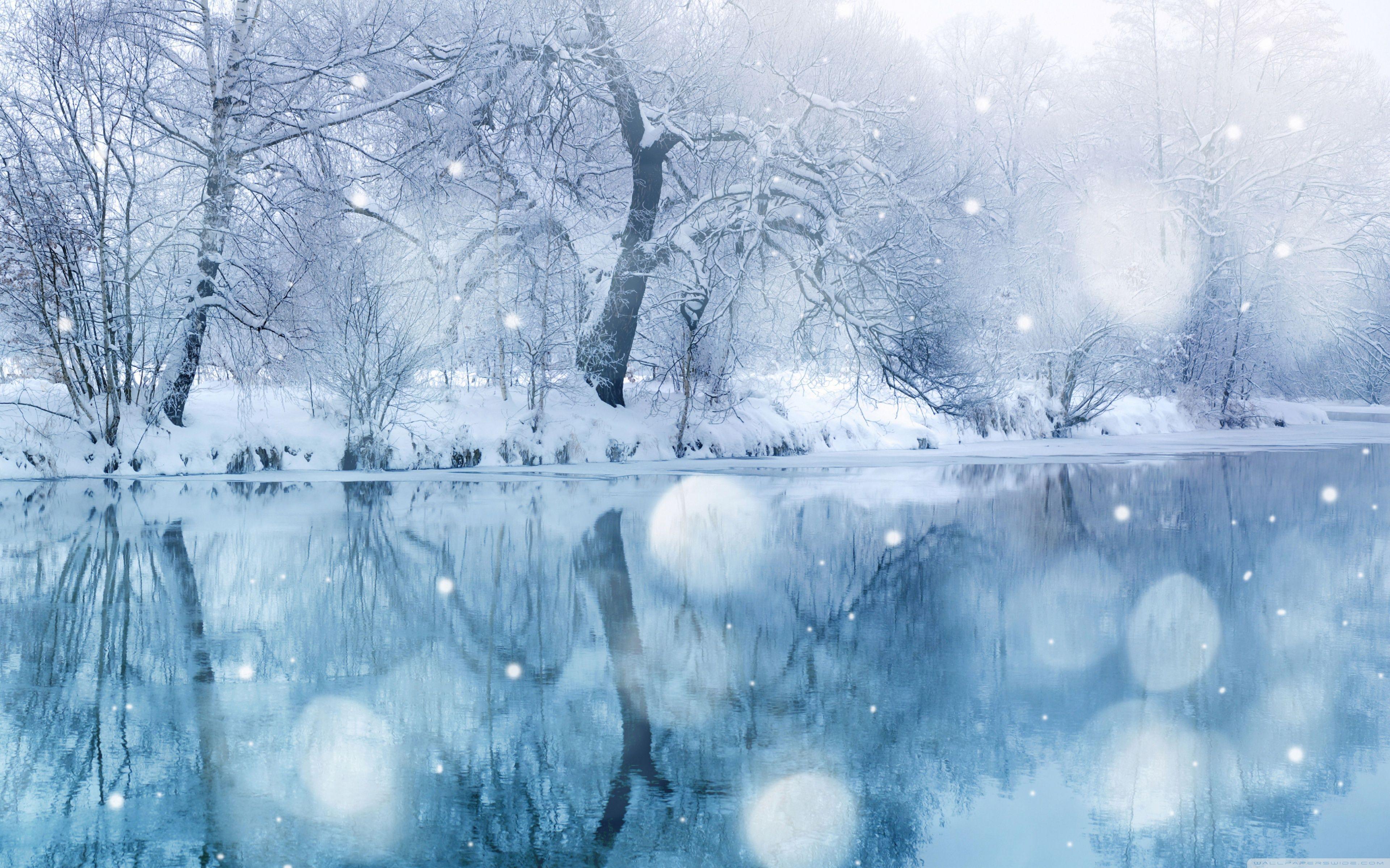 Winter Snowfall Wallpapers Wallpaper Cave