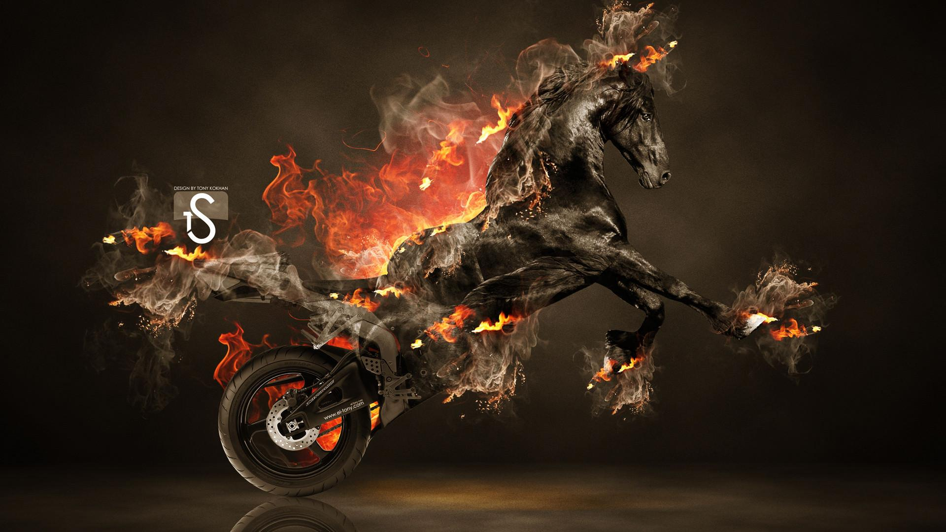 Fire Horse Wallpapers Hd Wallpaper Cave