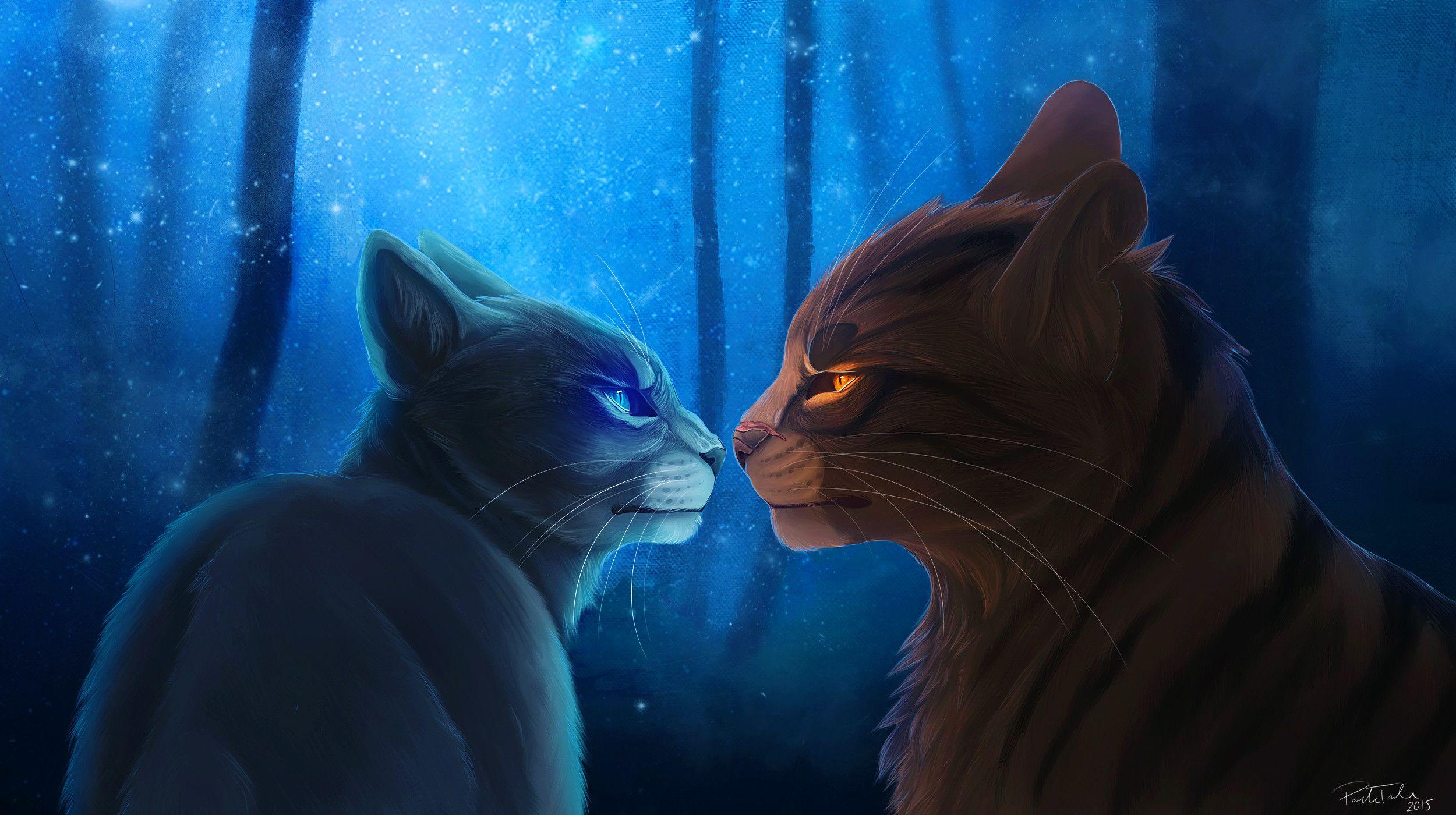 Warrior Cats Backgrounds And Wallpapers , Wallpaper Cave