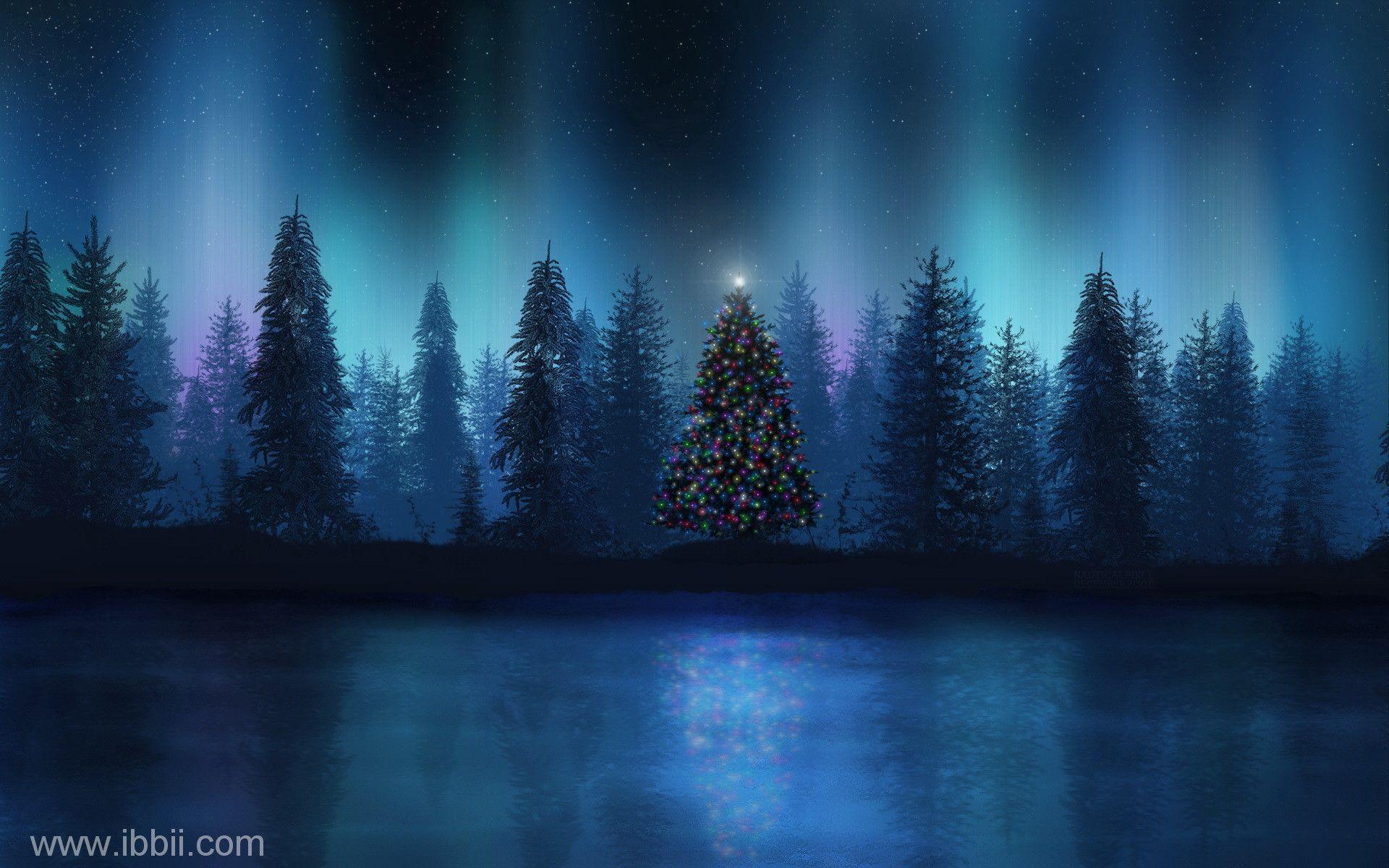 Night Snow Scenes Wallpapers Wallpaper Cave
