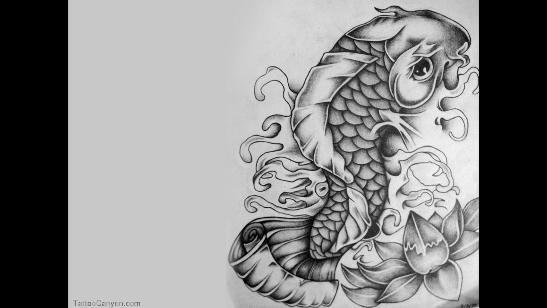 Koi Fish Tattoo Wallpapers Hd Wallpaper Cave