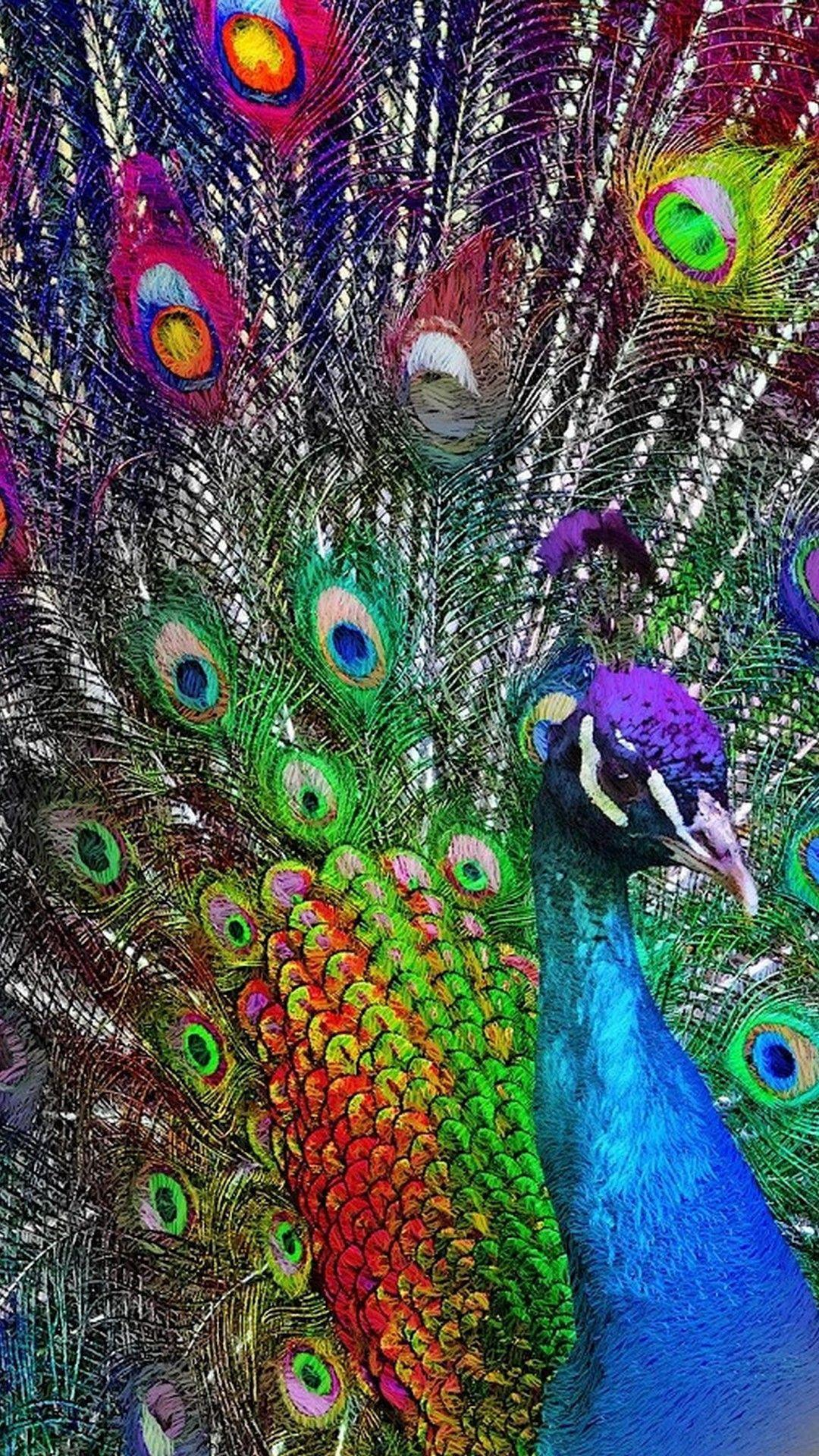 Purple Peacock Phone Wallpapers Wallpaper Cave