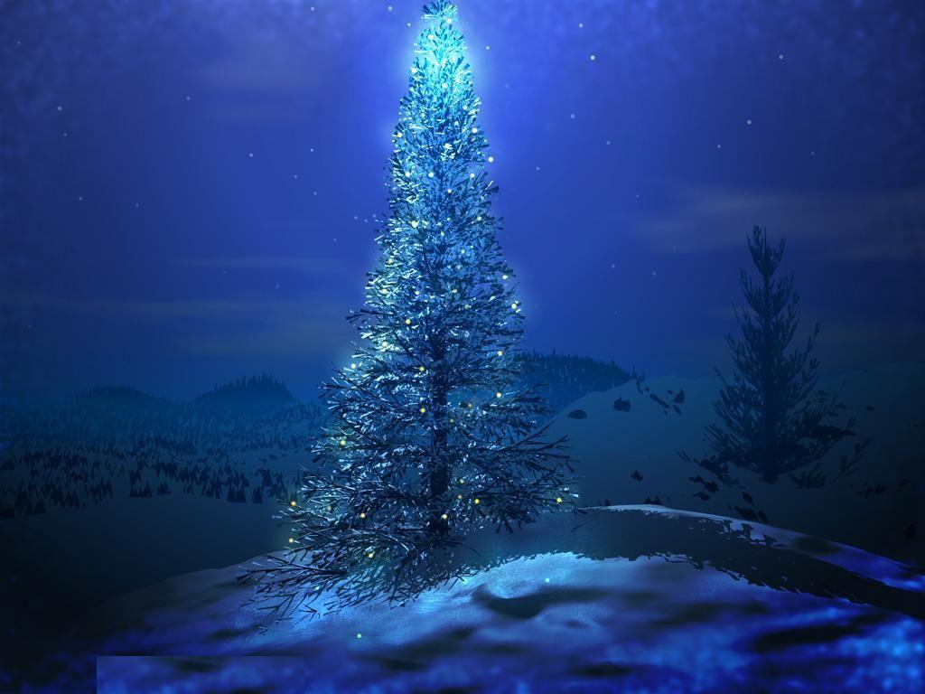 Christmas Tree Hd Wallpapers Wallpaper Cave