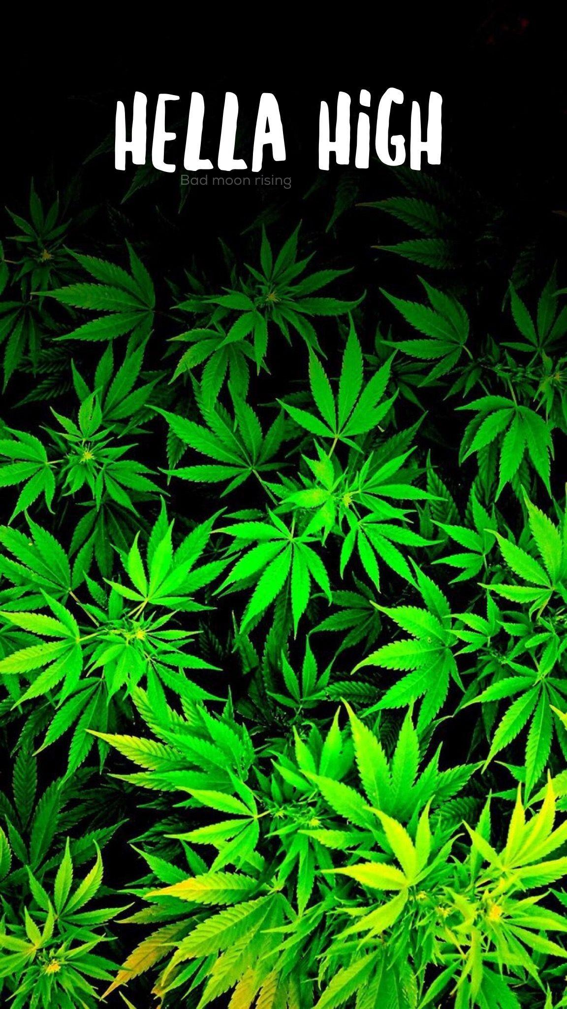 Stoners Backgrounds Wallpaper Cave