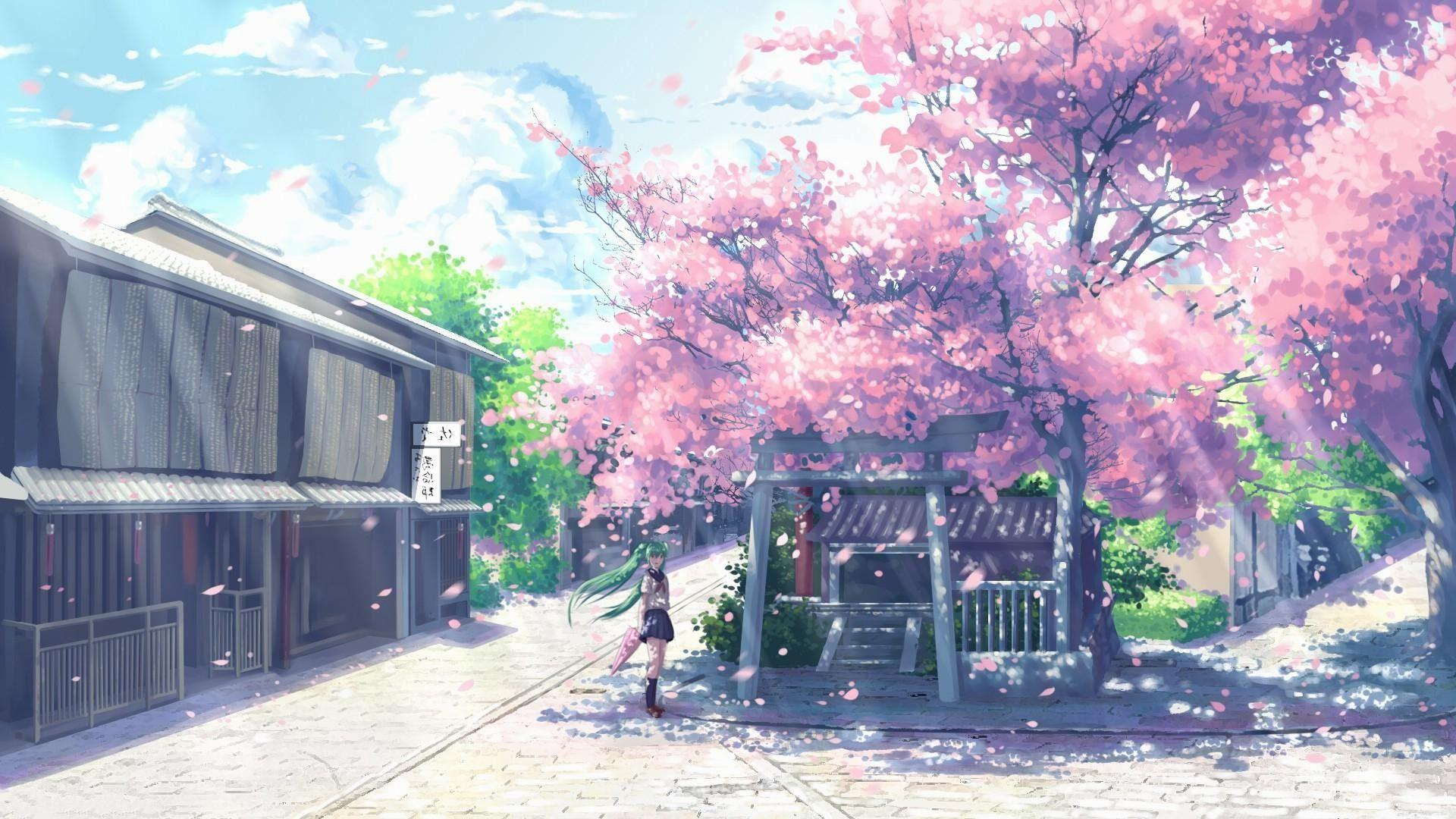 Anime Cherry Trees Wallpapers Wallpaper Cave