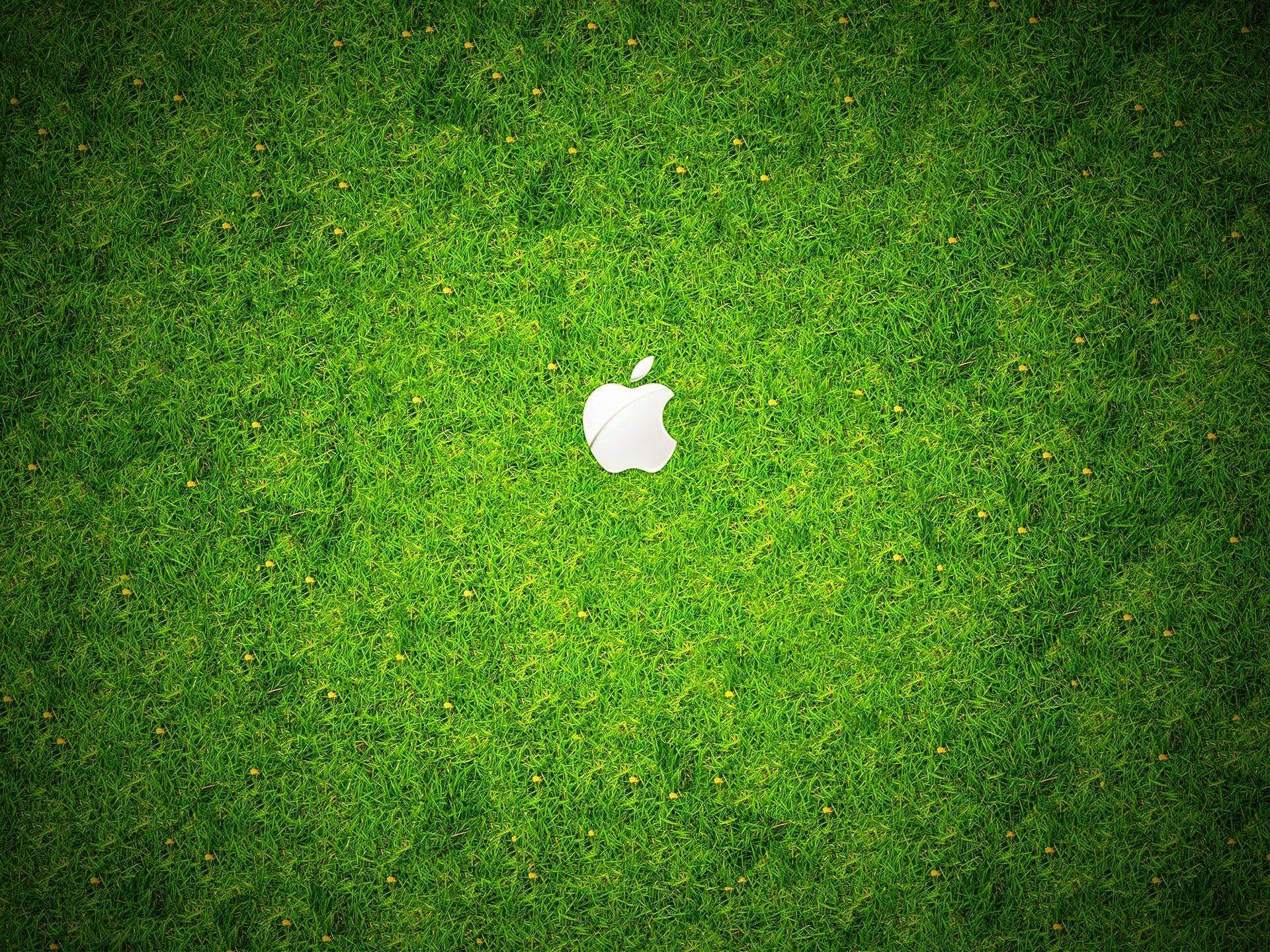 Apple Wallpapers Grass Wallpaper Cave