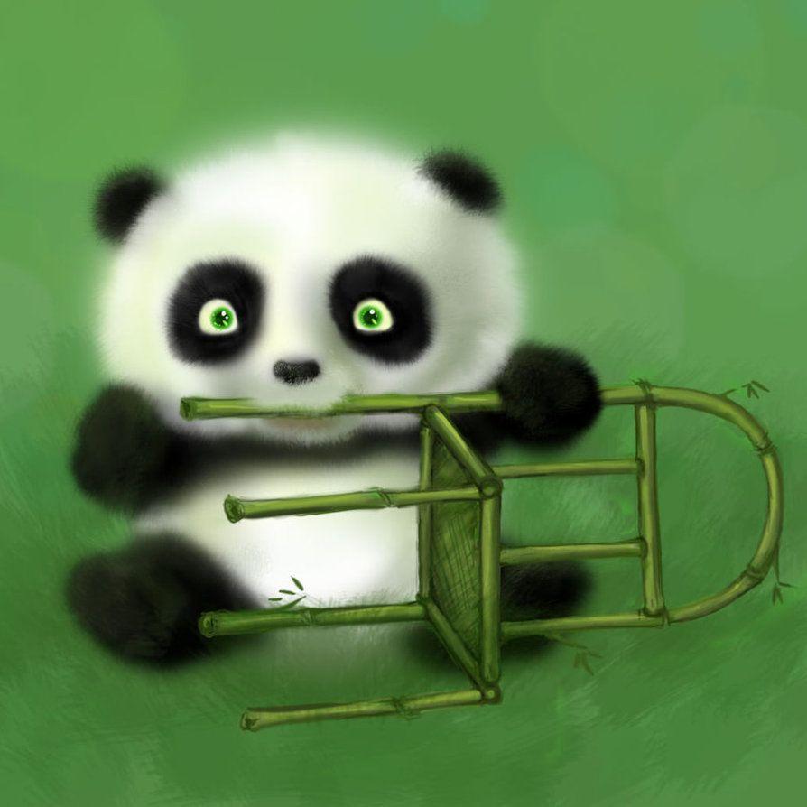 Baby Panda Cartoon Wallpapers Wallpaper Cave