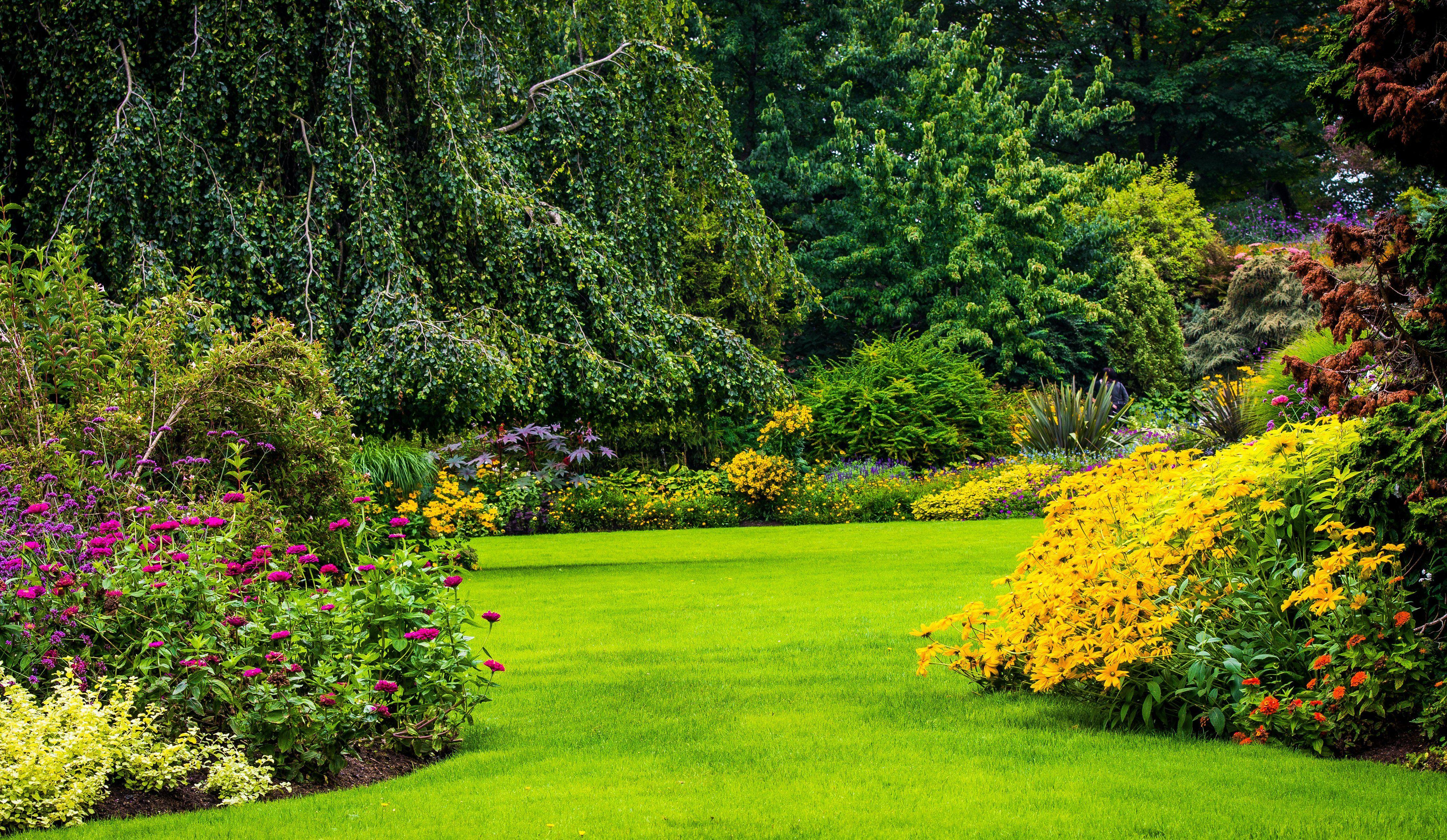 garden hd gardens flower nature backgrounds wallpapers digital vancouver canada lawn flowers trees background natural queen elizabeth plants shrubs spring