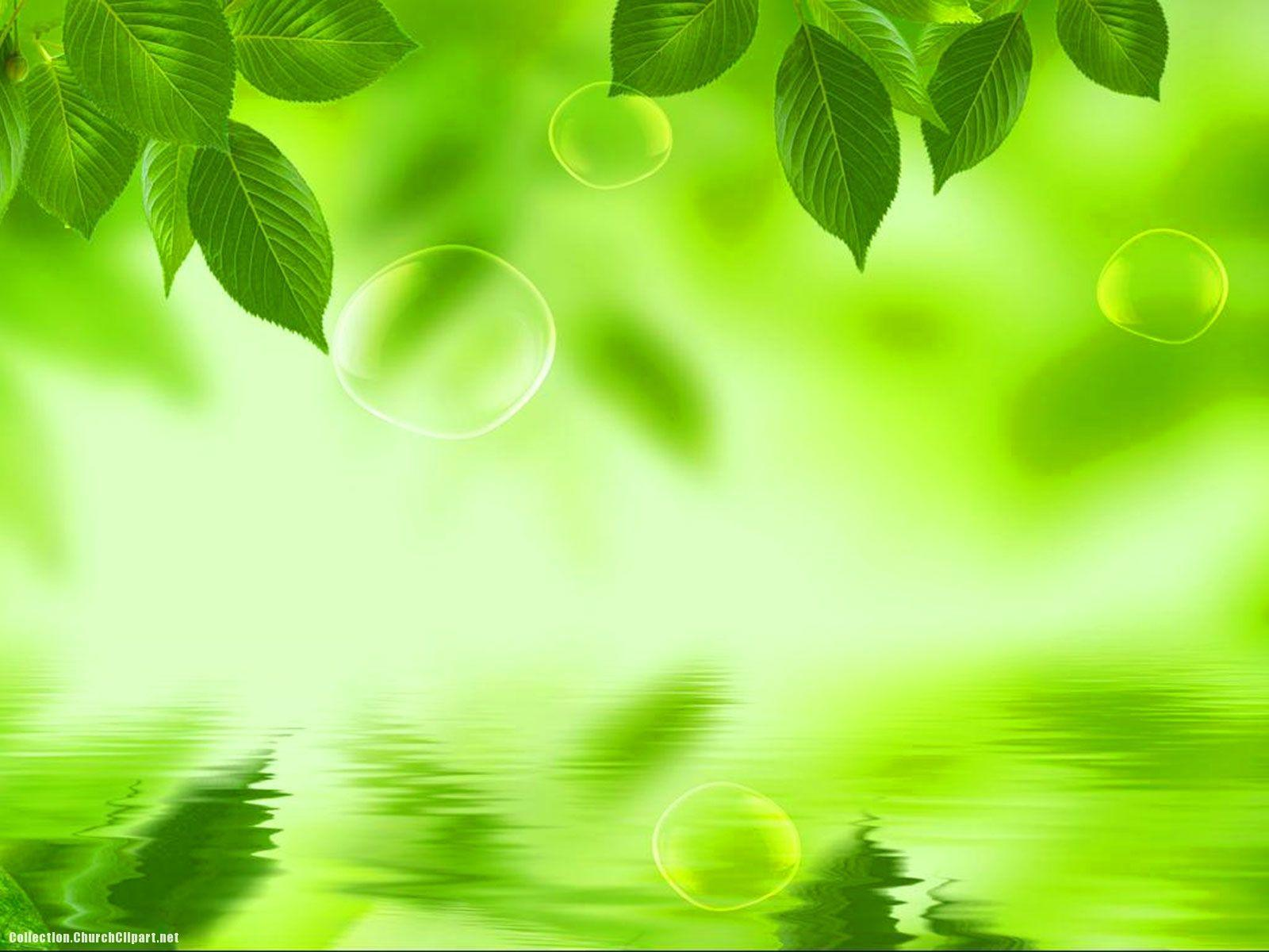 green backgrounds for ppt