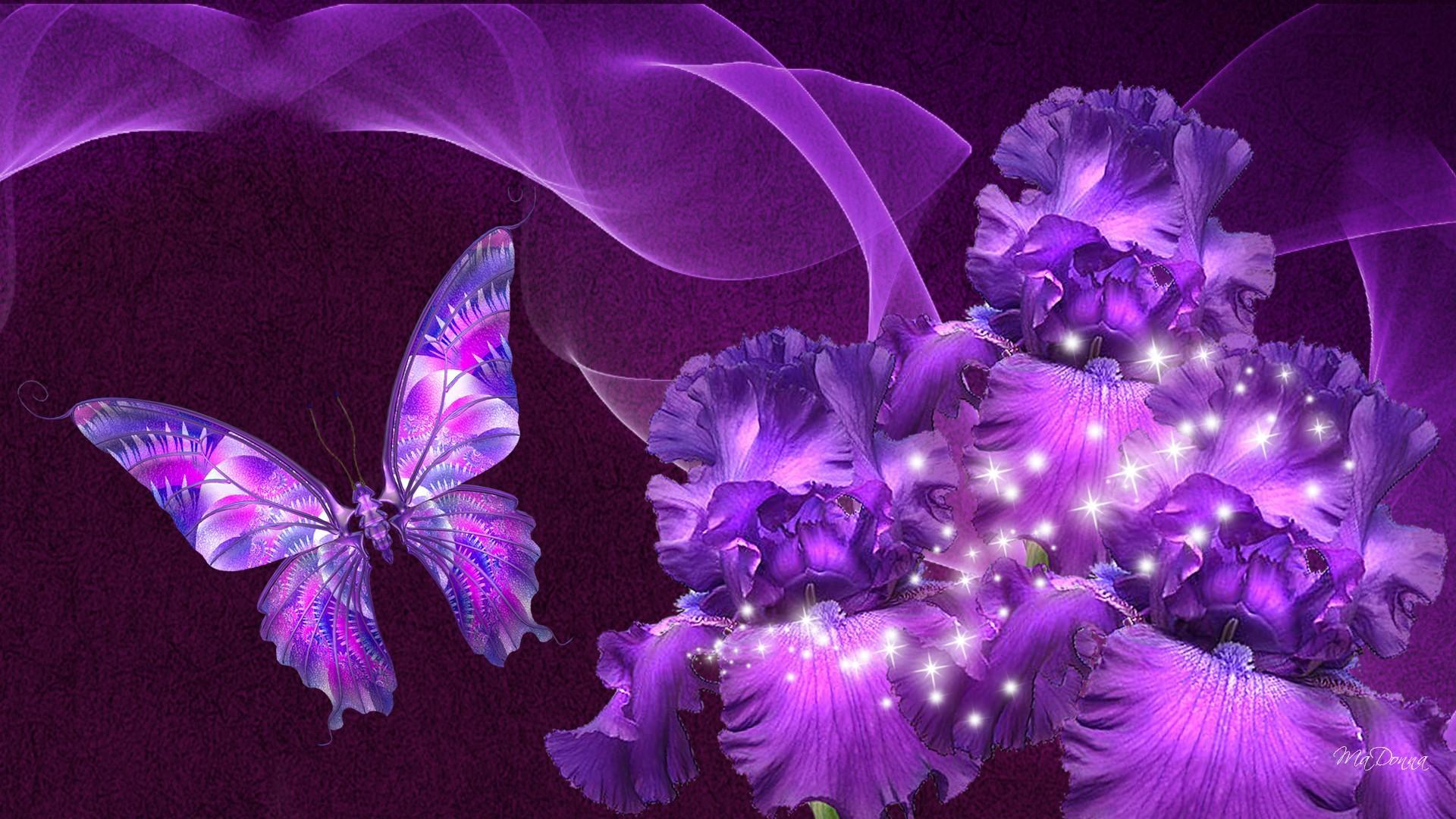 Aninimal Book: Beautiful Purple Butterfly Wallpapers - Wallpaper Cave