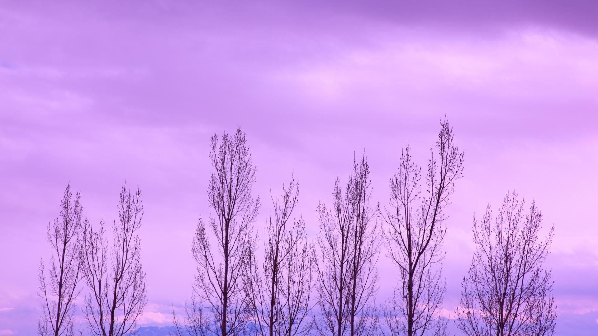 Desktop Tumblr Purple Wallpapers Wallpaper Cave