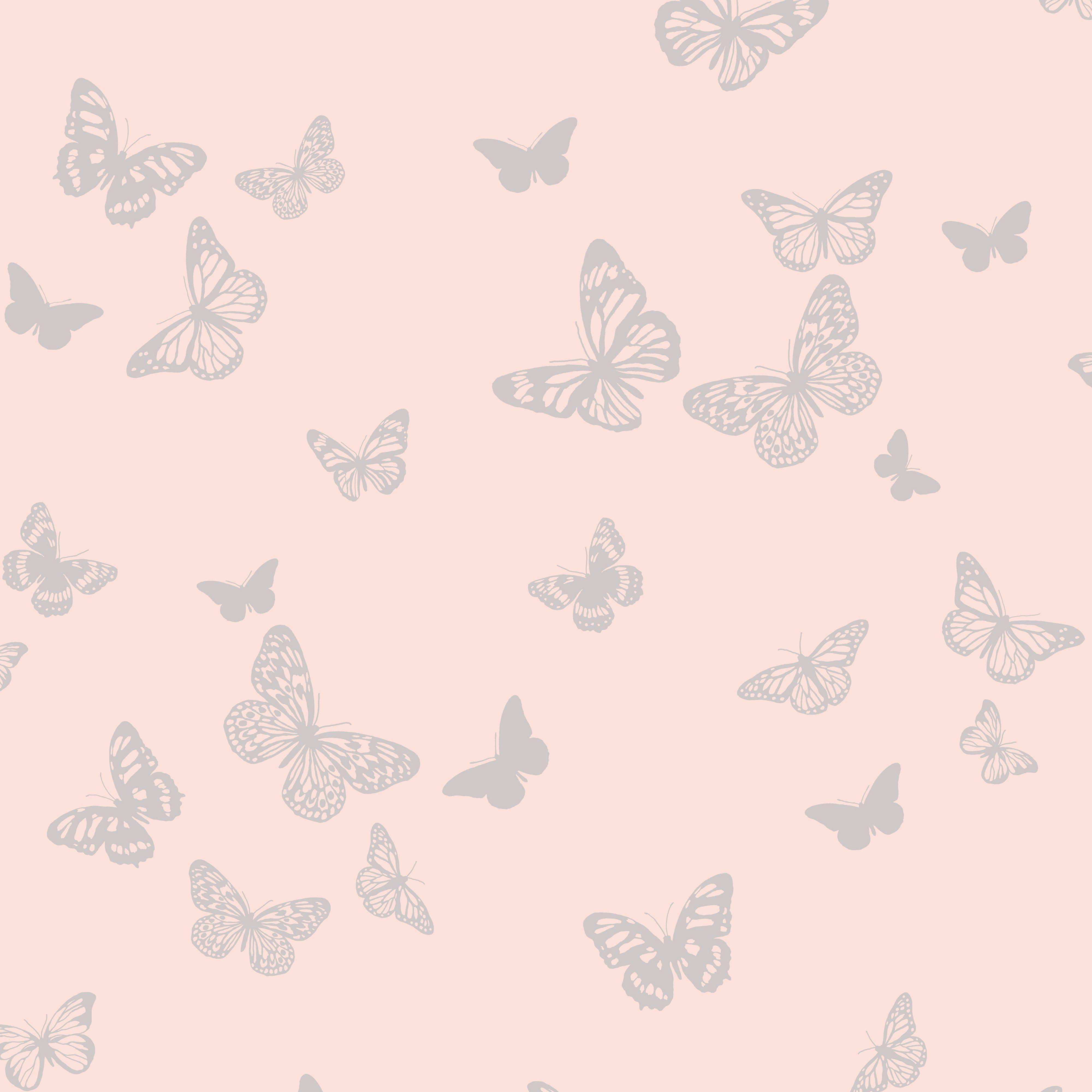 Butterfly Pic Wallpapers Wallpaper Cave