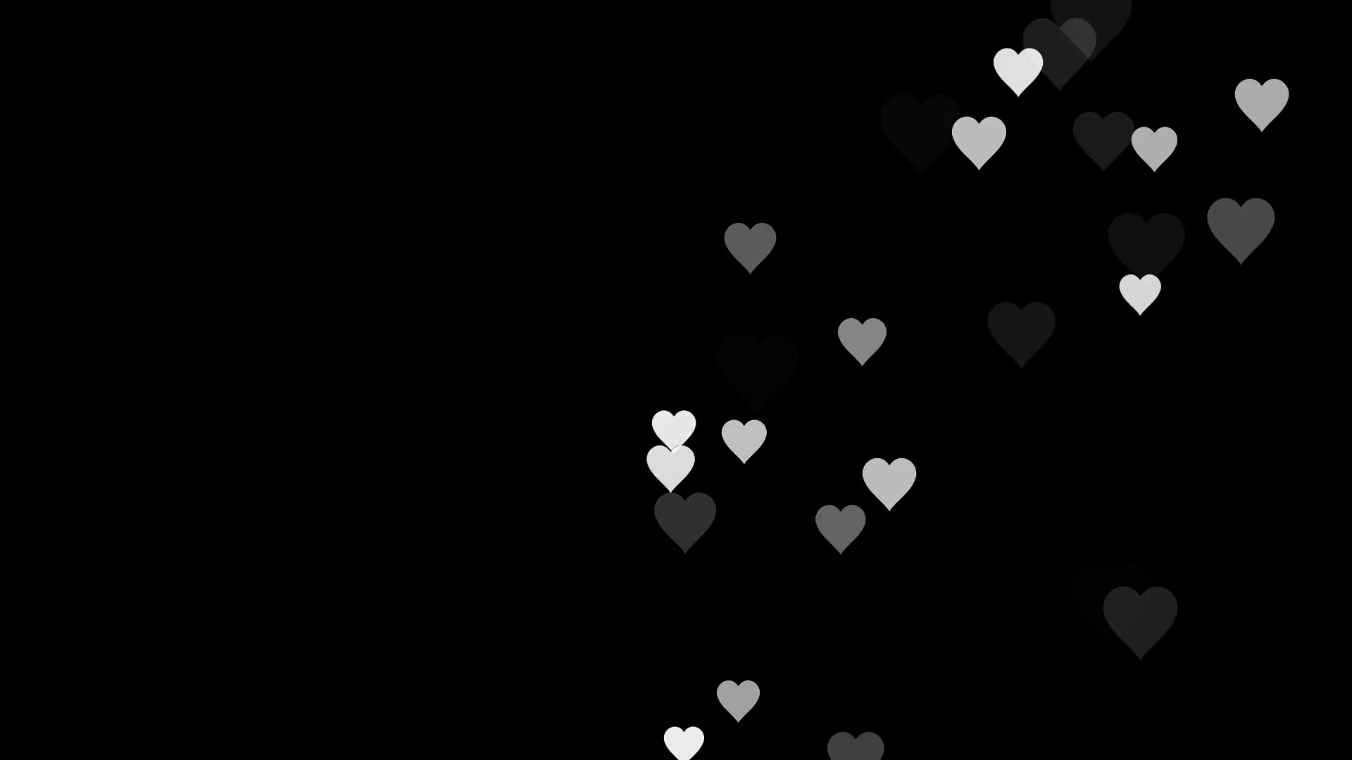 Animated many moving small white hearts useful greeting for wishing