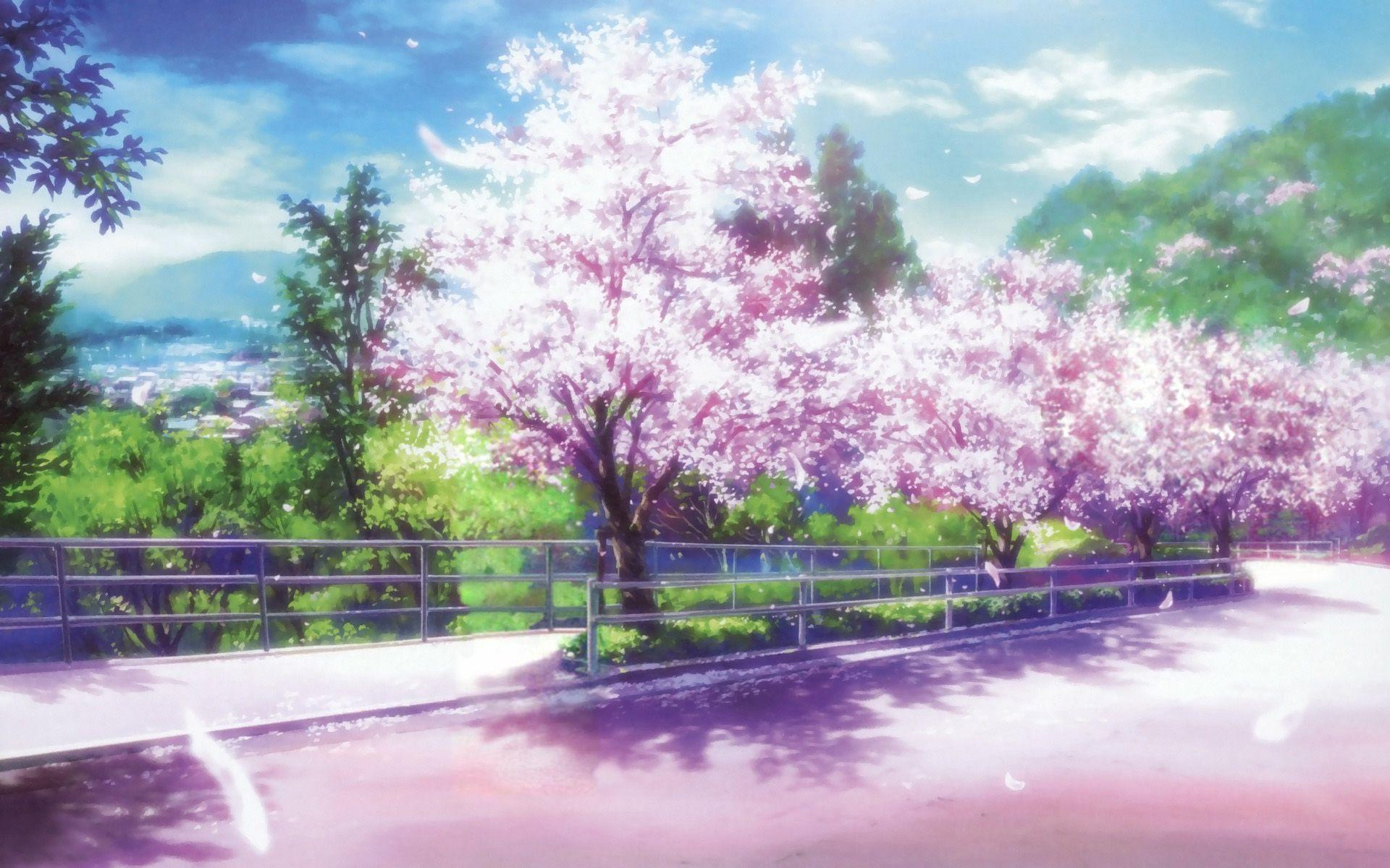 Anime Sakura Trees HD Wallpapers - Wallpaper Cave