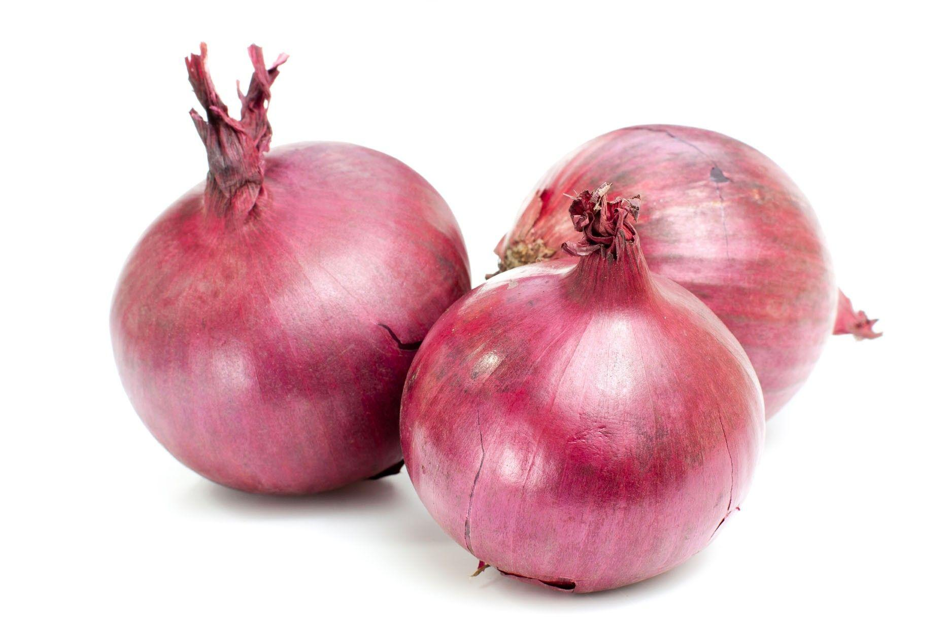 Onion Wallpapers Wallpaper Cave