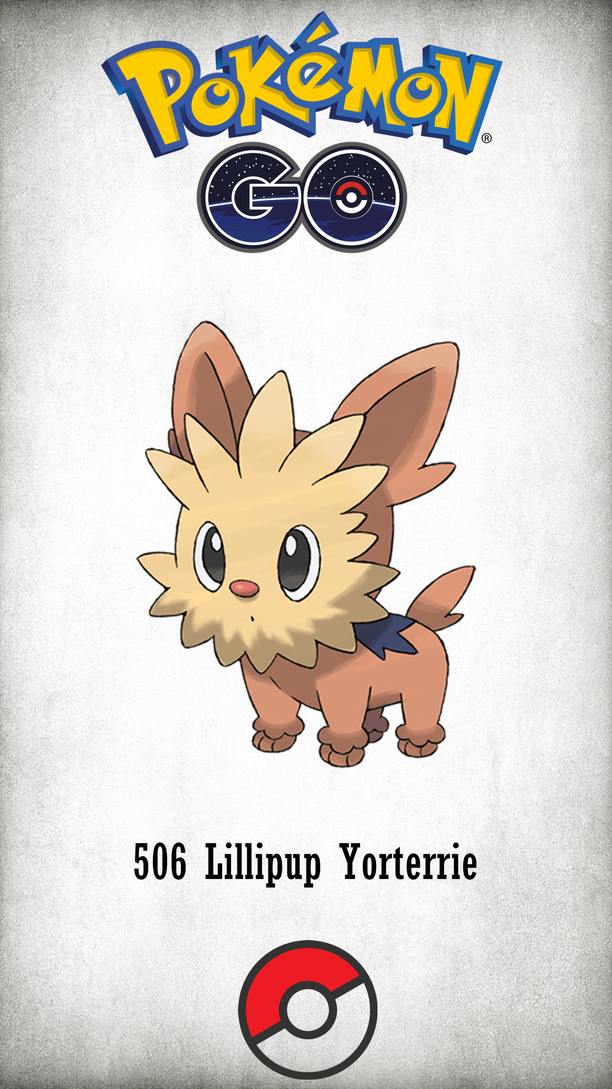 506 Character Lillipup Yorterrie
