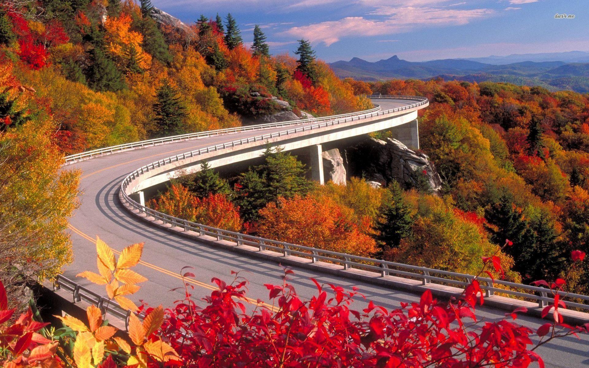 Blue Ridge Parkway In Fall