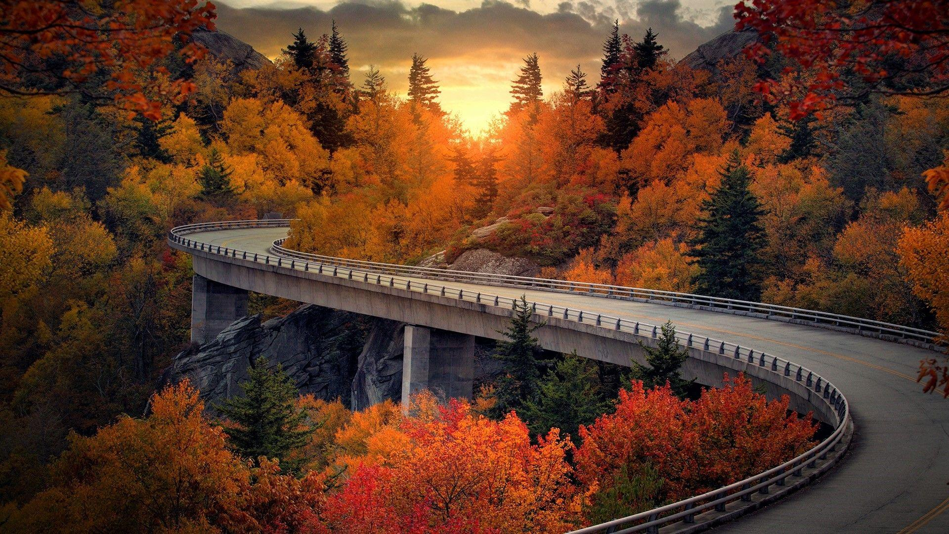 Viaduct on the Blue Ridge Parkway in North Carolina in Autumn HD