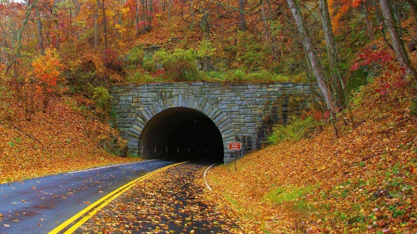 Other: Tunnel Blue Ridge Mountains Autumn Colorful Falling Leaves