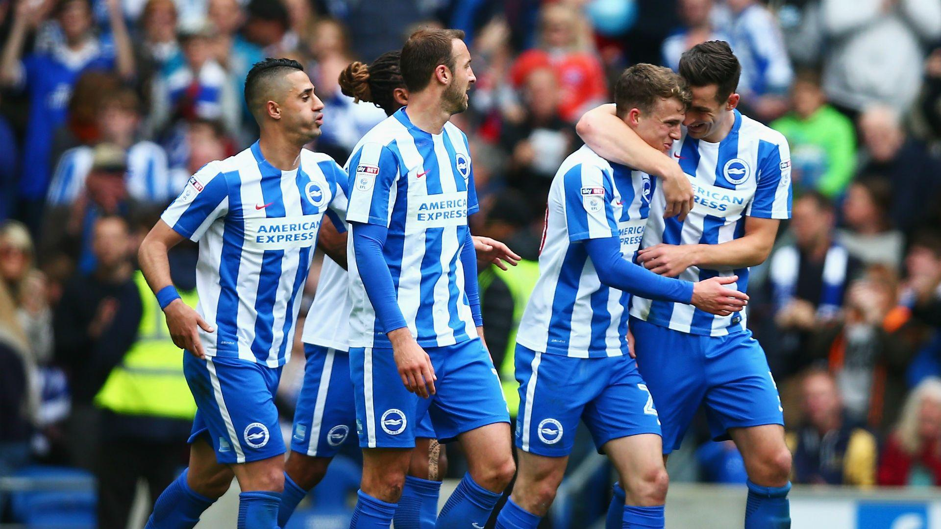 Dale Stephens Wallpaper: Brighton & Hove Albion F.C. Wallpapers