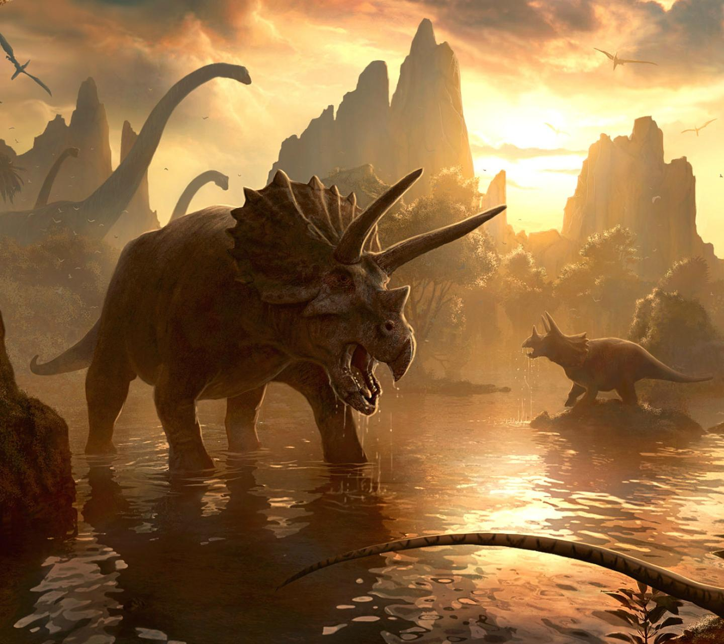 Triceratops Wallpaper by NewAgeMan17 - 27 - Free on ZEDGE™
