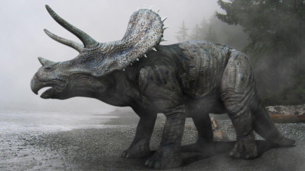 Triceratops reptil animales extincion wallpaper   1920x1080 .