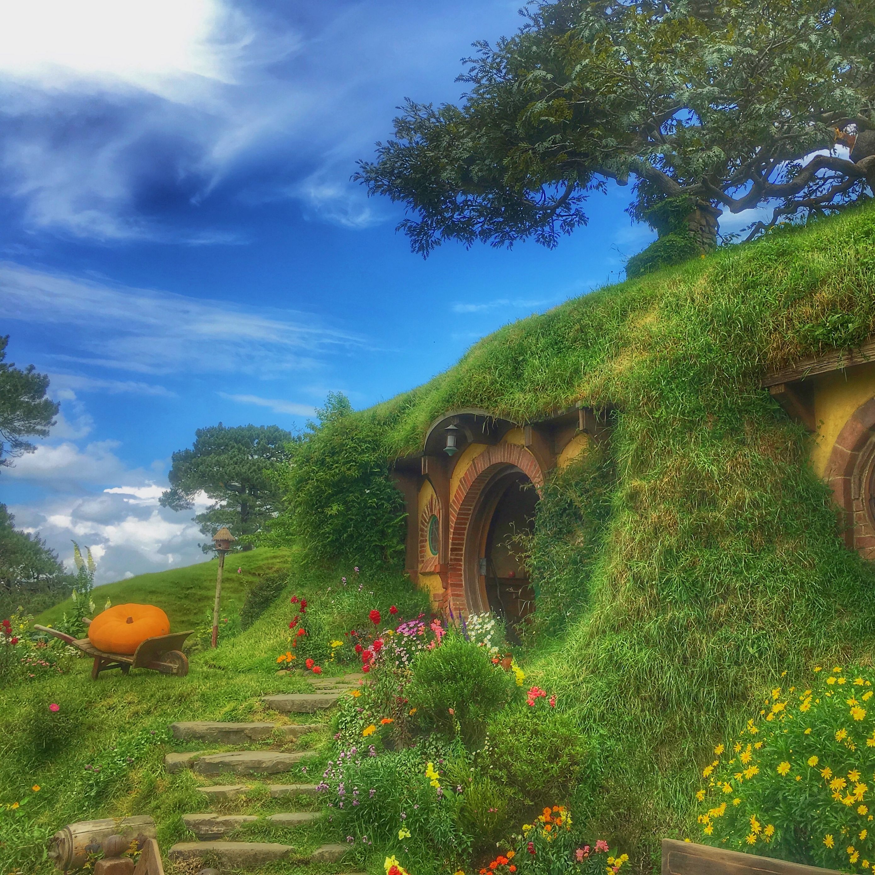 Download wallpapers 2780x2780 hobbiton movie set, forest house