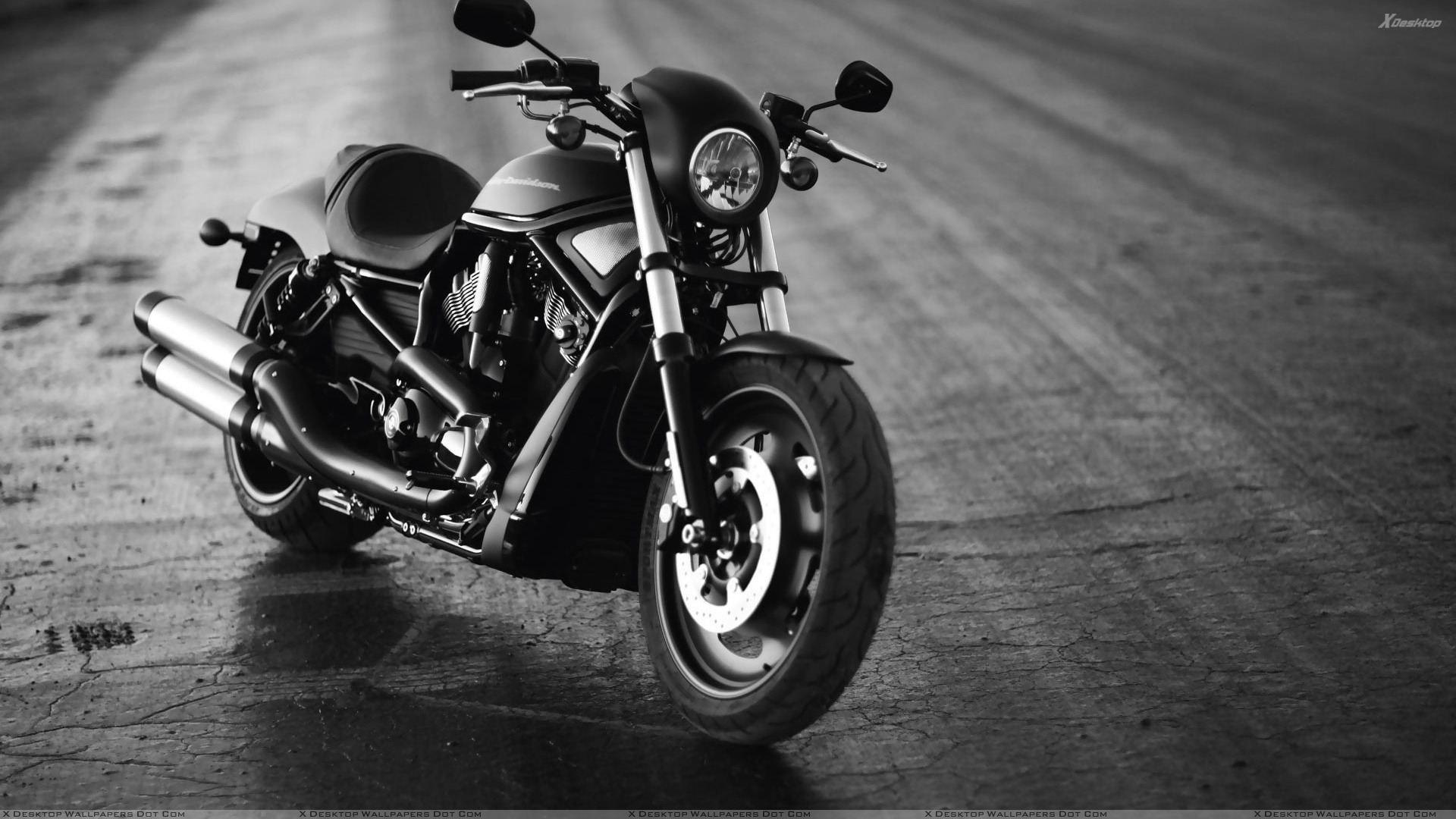 Harley davidson bike wallpaper gallery