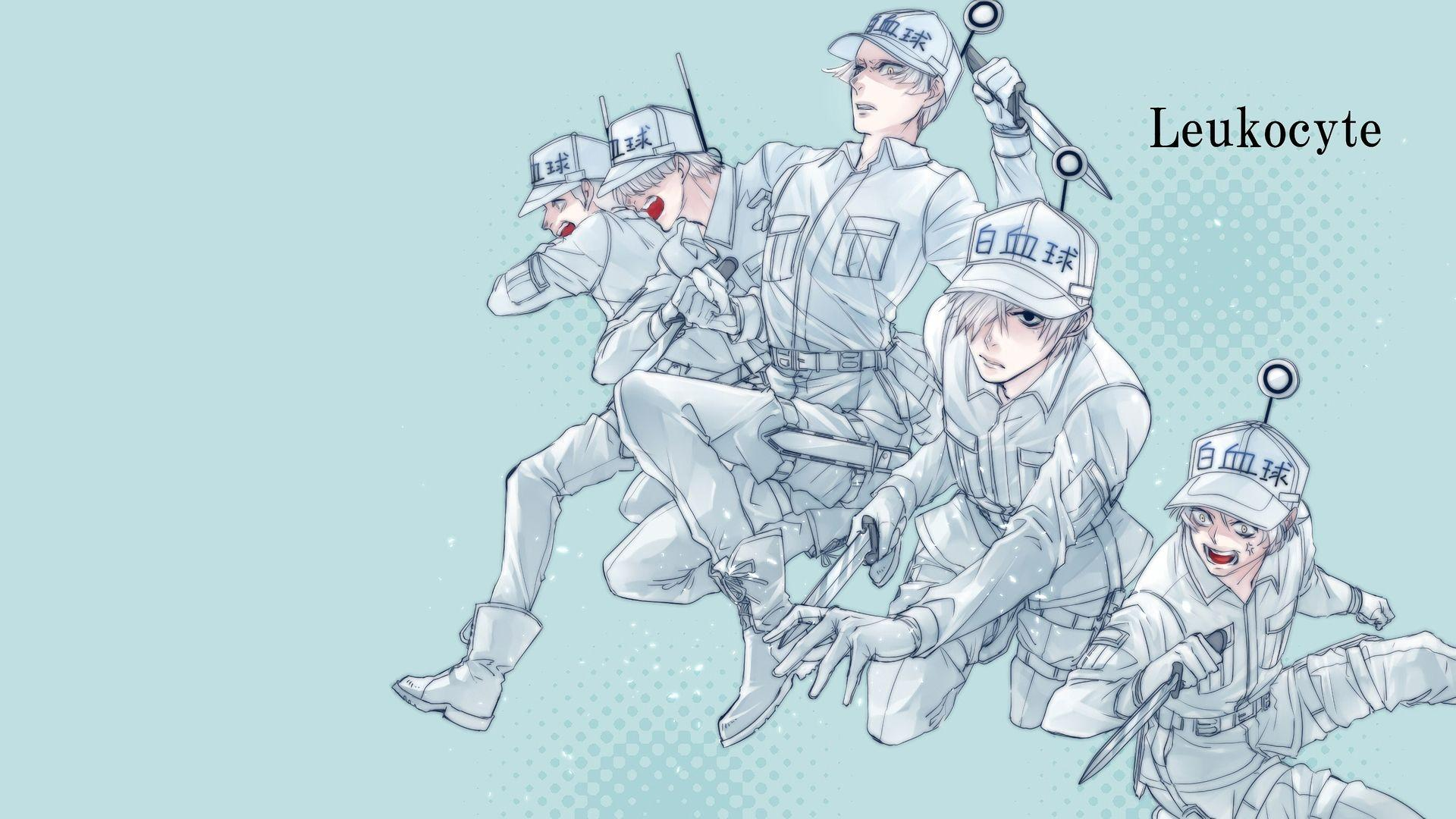 Cells at Work! HD Wallpapers