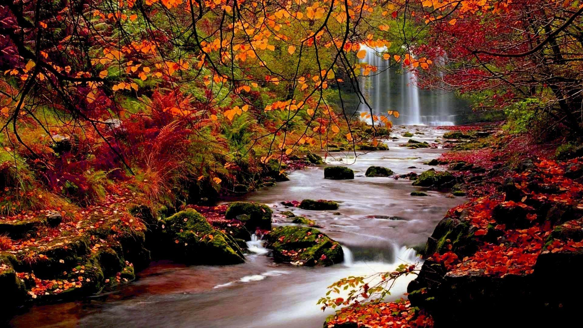 Autumn River Falls Stream Best Wallpapers Lovely Fall Season iPhone ...