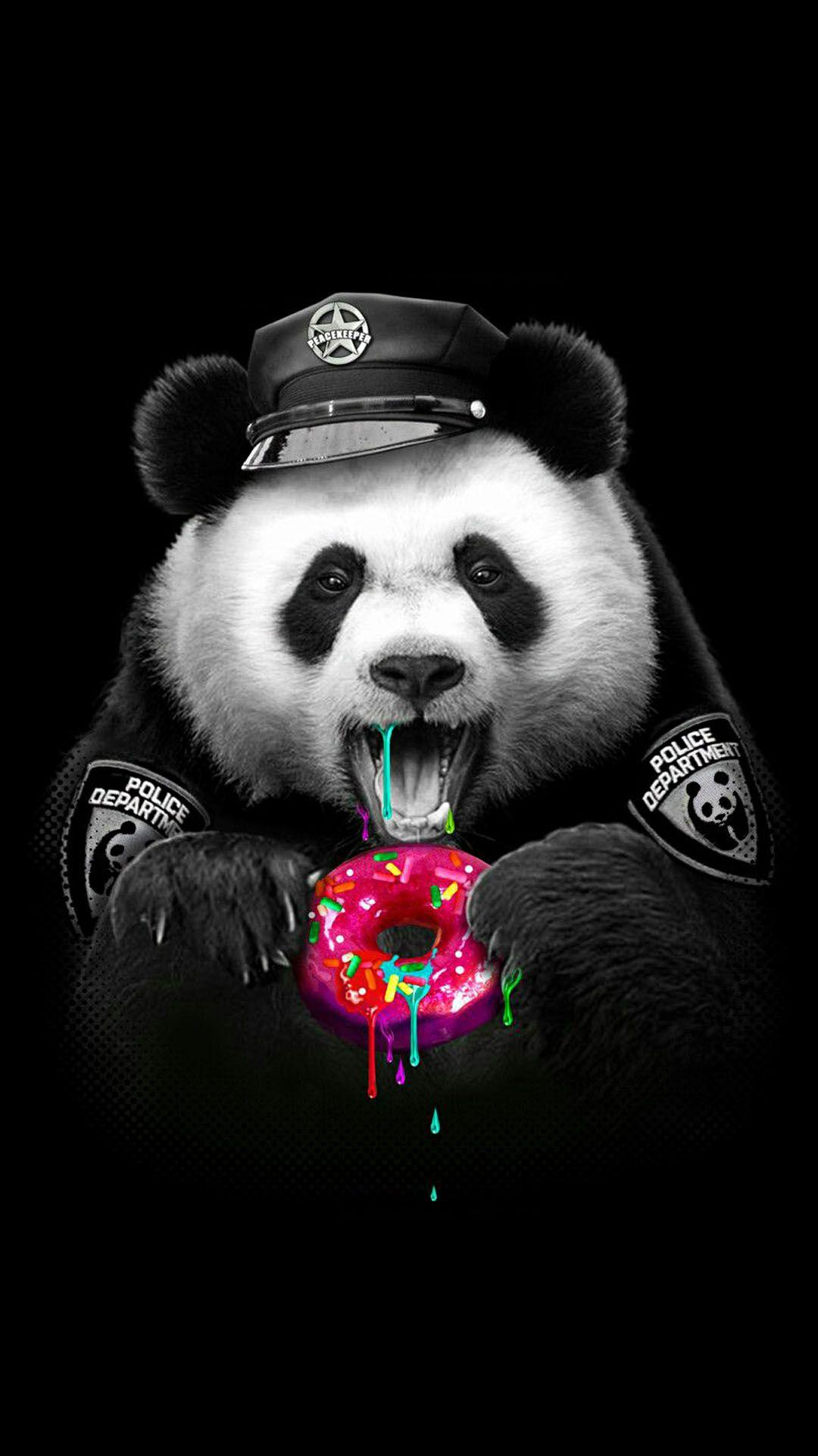 Supreme Panda Wallpapers Wallpaper Cave