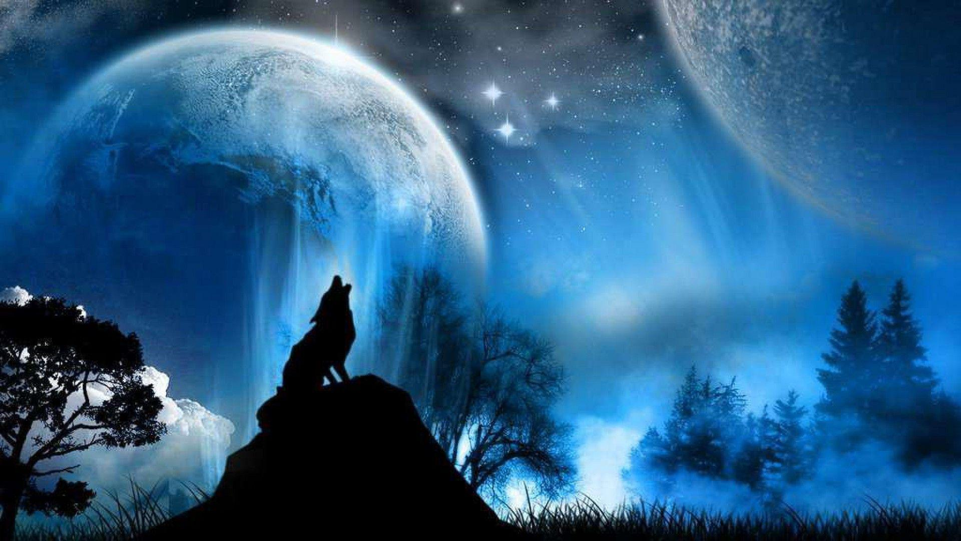 Night Wolf Wallpapers   Wallpaper Cave